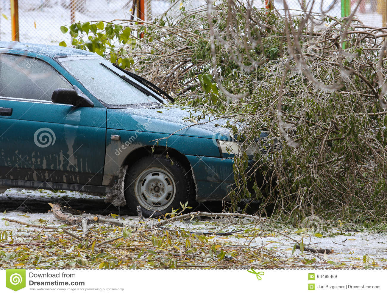 Drzewo wierzchołek który spadał samochód w zimie
