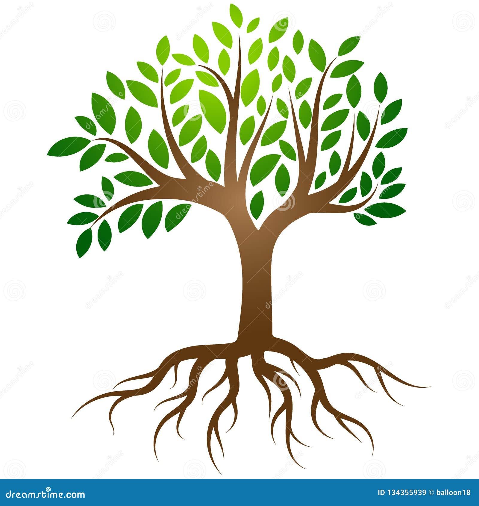 Drzewo zakorzenia logo wektor