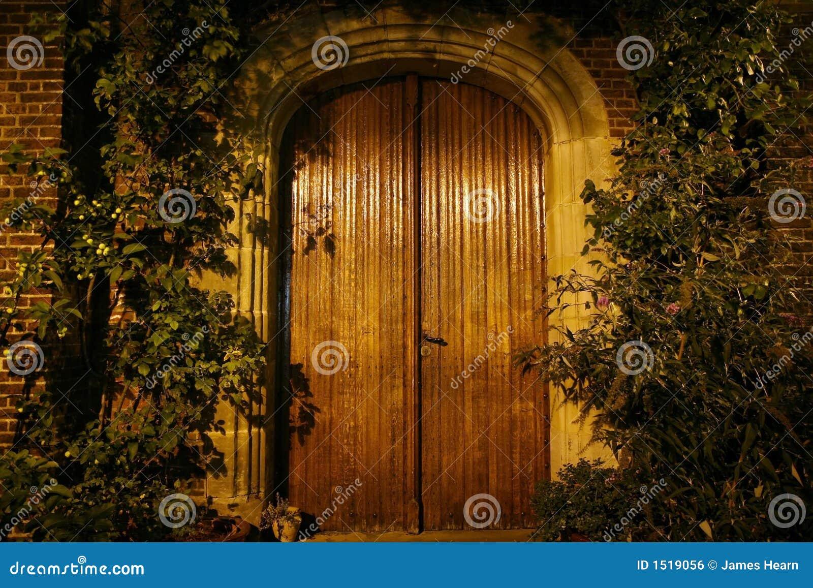 Drzwi drewniany