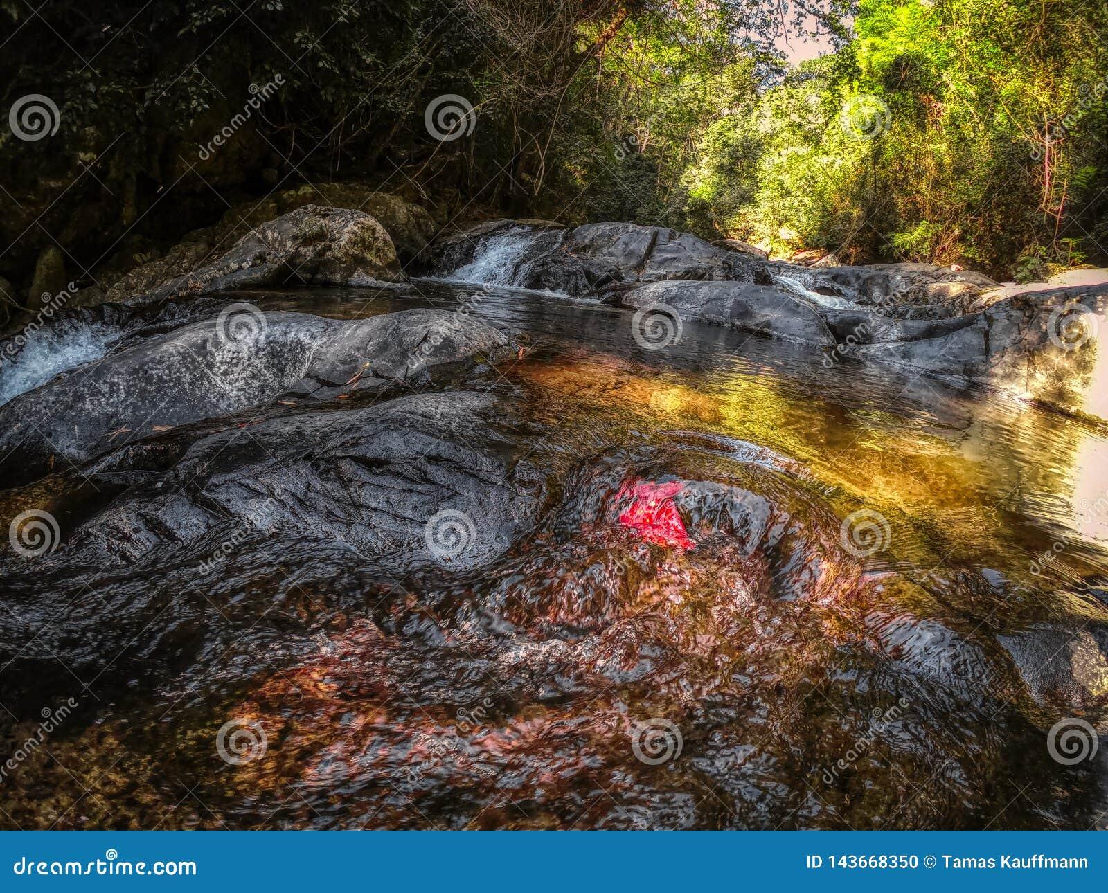 Dschungel-Wasserfall - Wasserfall Hua Hin Thailand Pala U