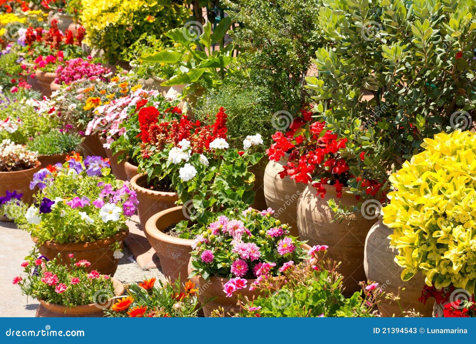 D tail espagnol de jardin de fleurs en espagne photos for Jardin en espagnol