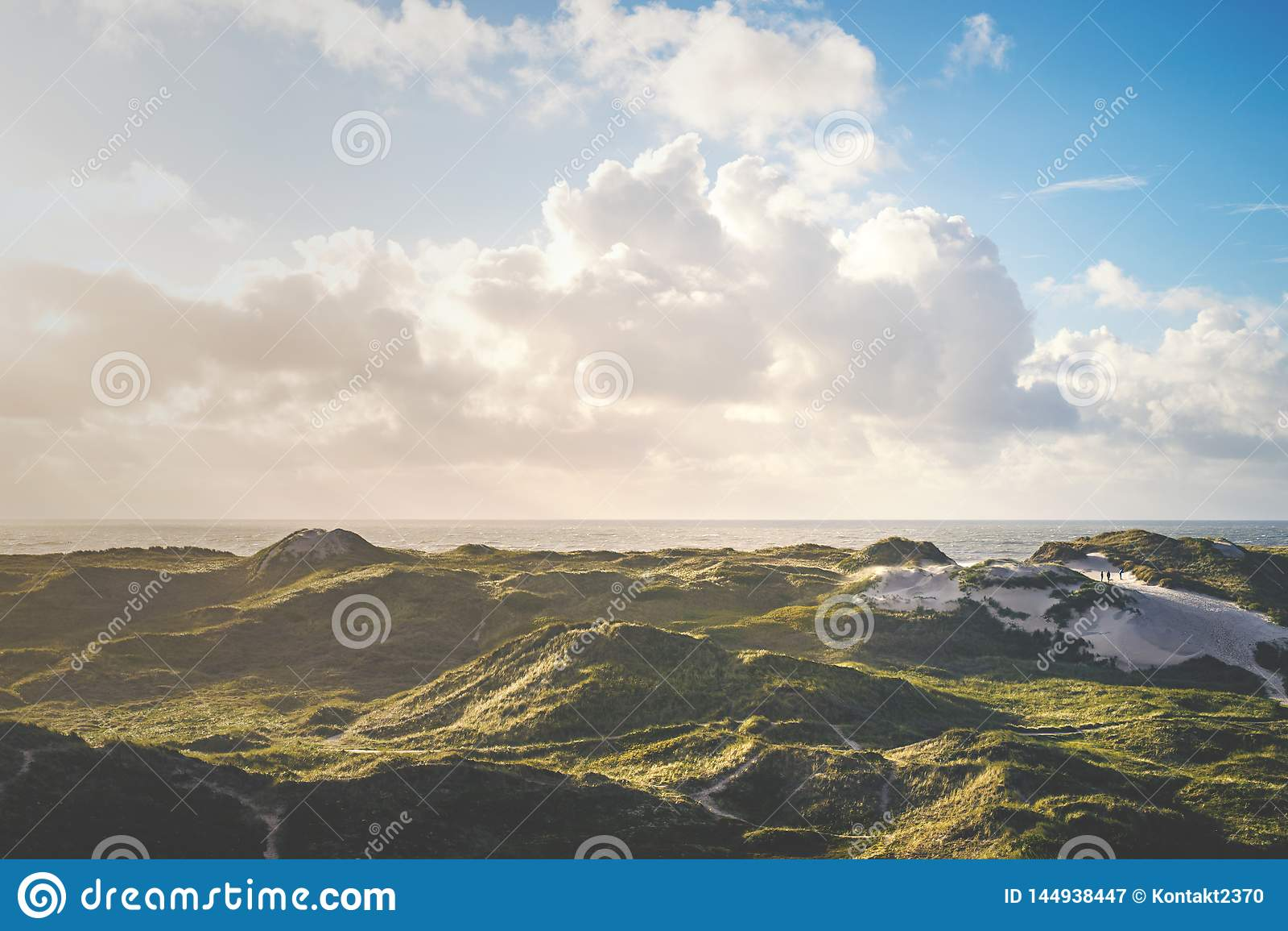 Duńskie diuny przy morzem północnym przy Hvide Sande