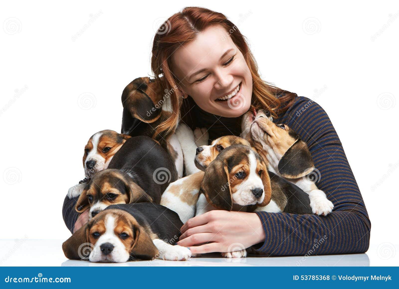 Duża grupa beagle szczeniaki i kobieta