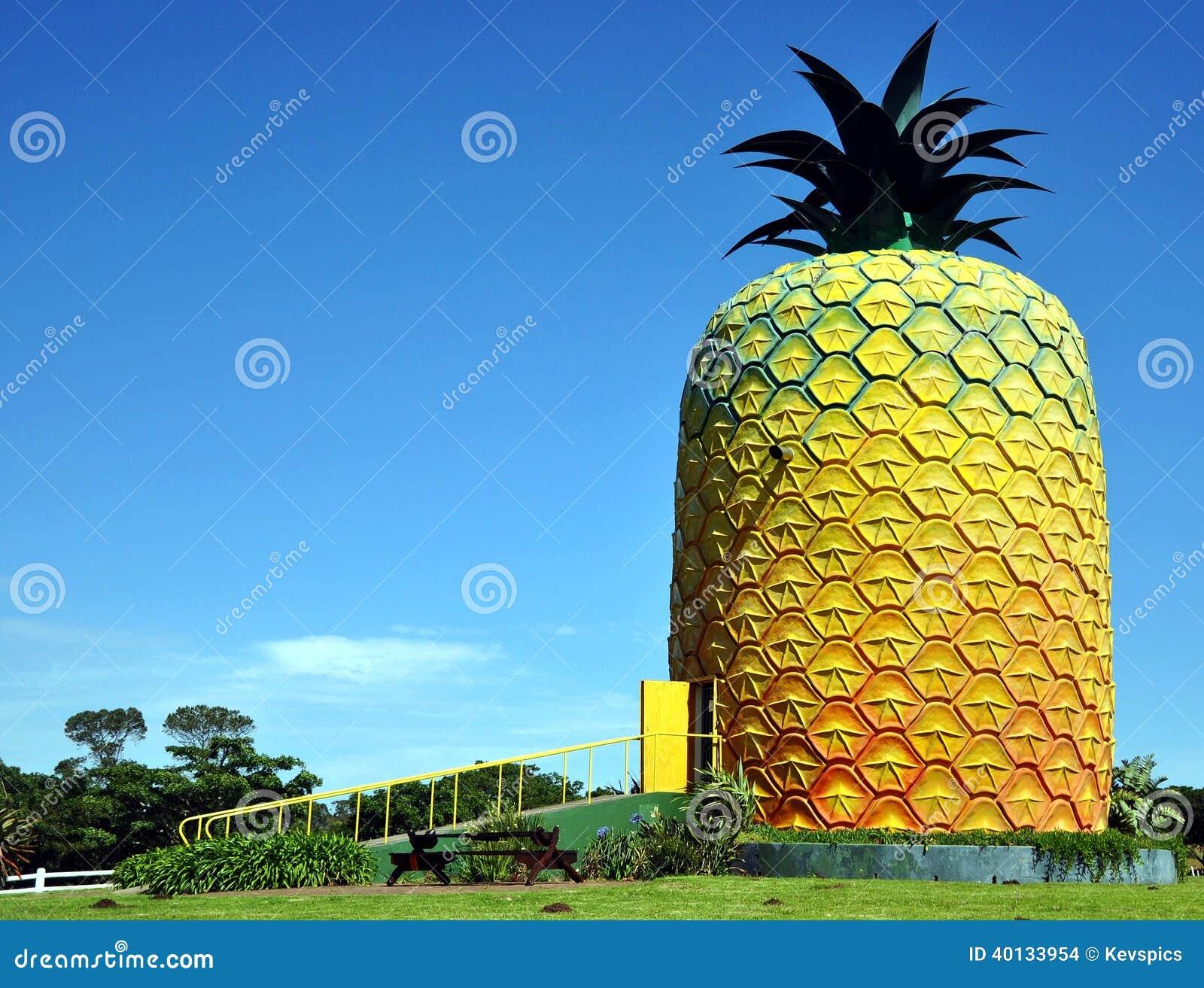 Duży ananas, lata wzgórza gospodarstwo rolne