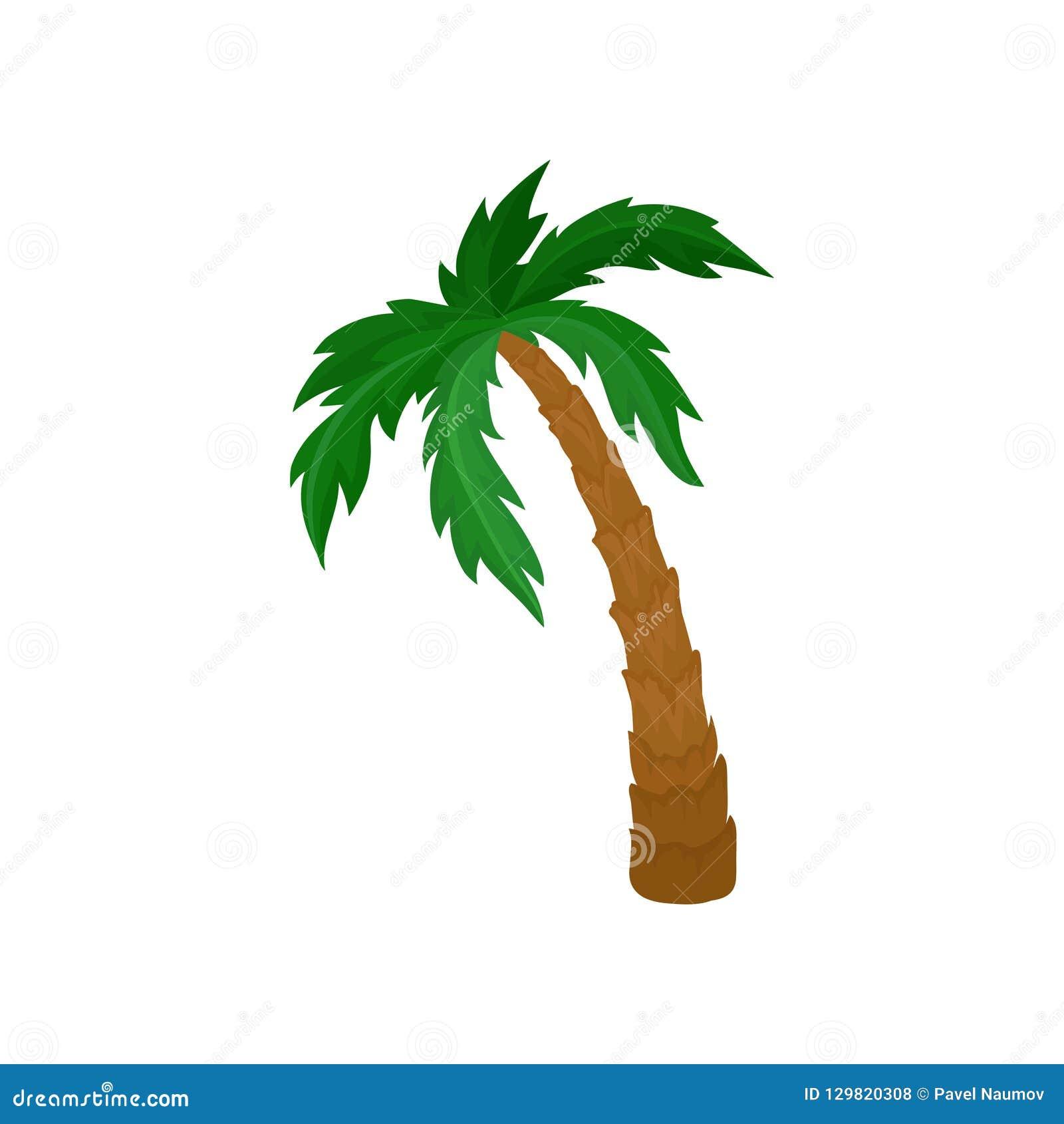 Duży drzewko palmowe z zieleń liśćmi i brązu bagażnikiem Naturalny krajobrazowy element Płaski wektor dla pocztówki lub plakata