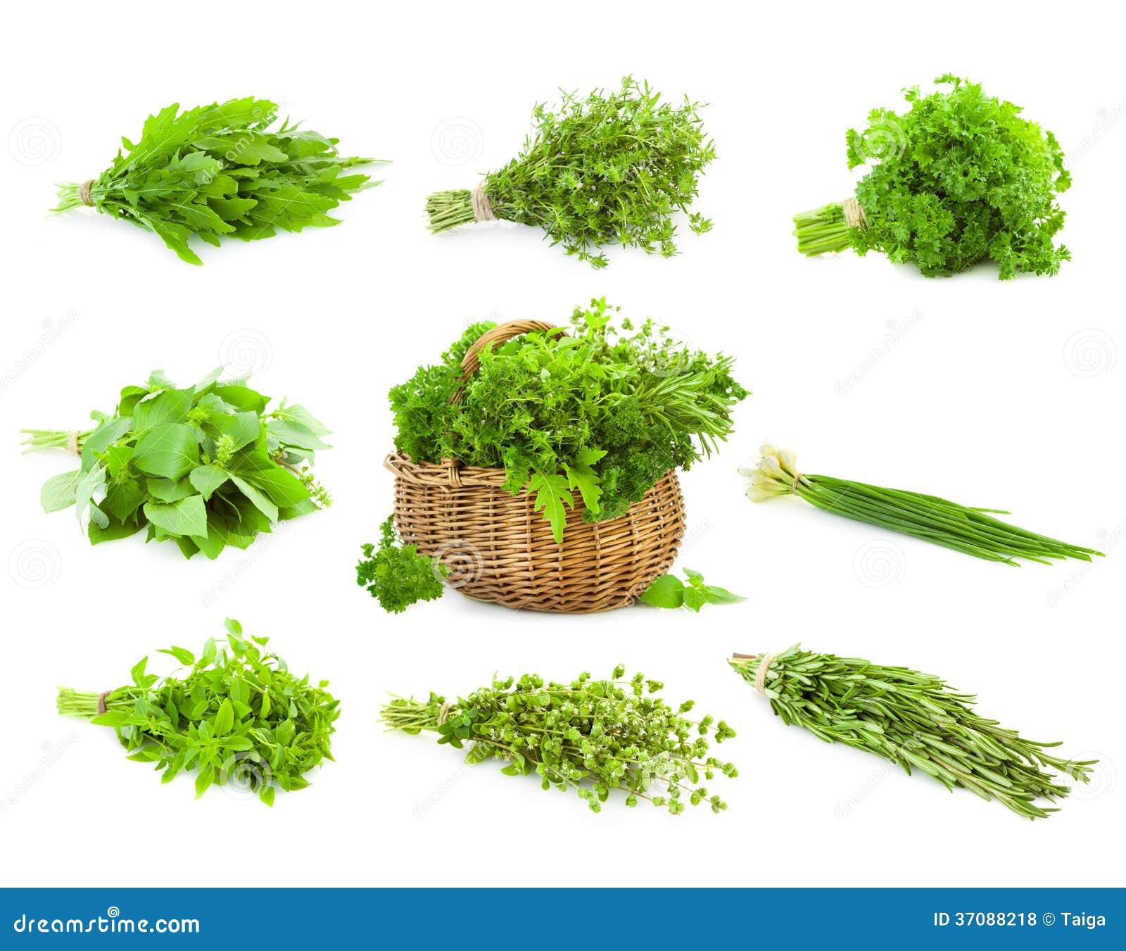 Duży set wiązki i kosz świezi pikantność ziele/odizolowywaliśmy