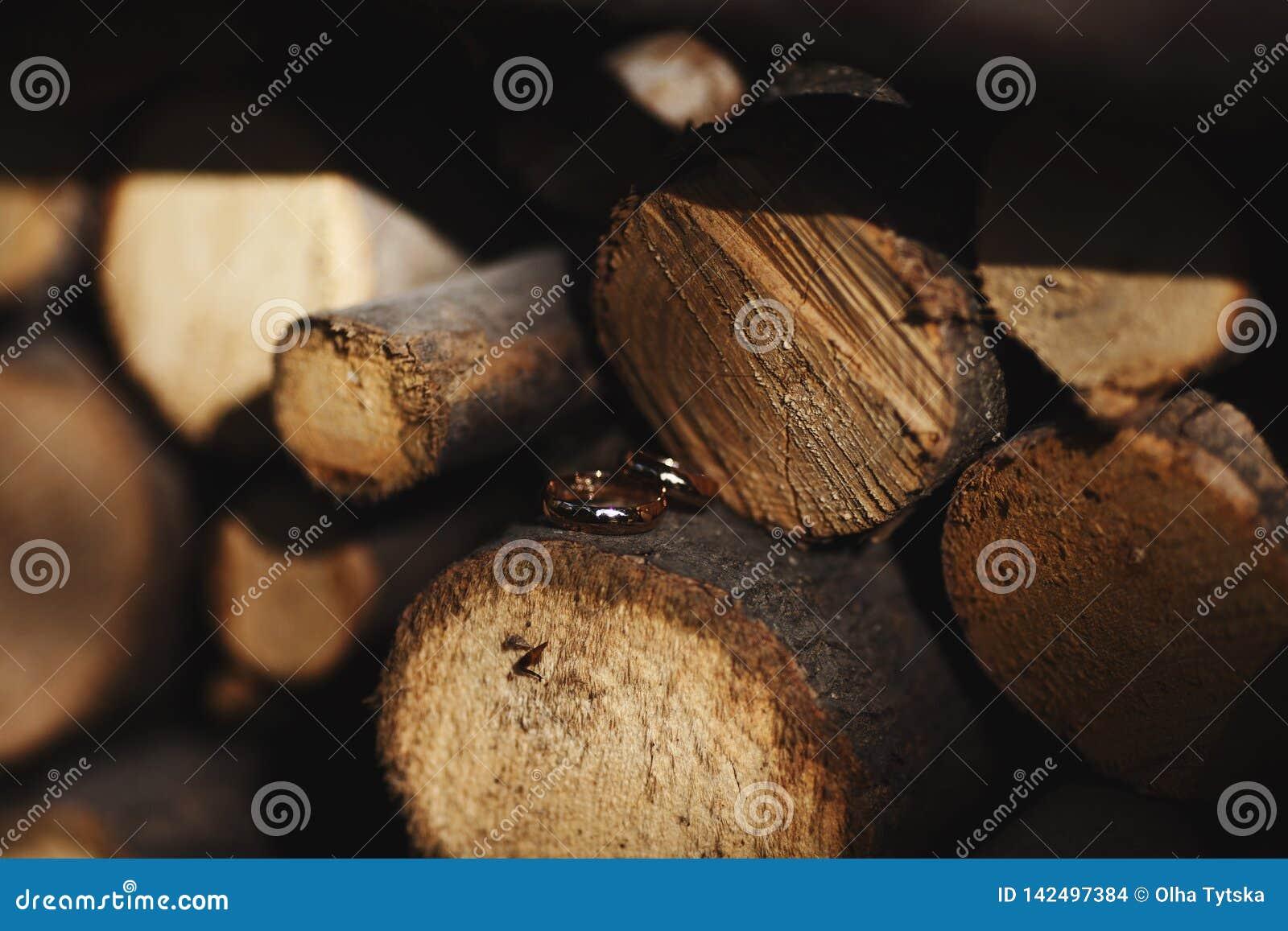 Duas alianças de casamento no sinal da infinidade em uma madeira Conceito do amor
