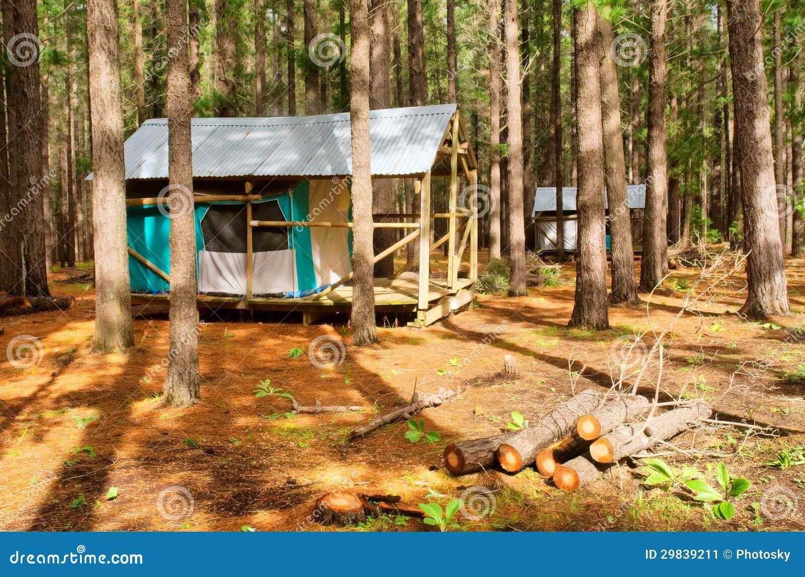 Duas barraca-casas da floresta após a chuva