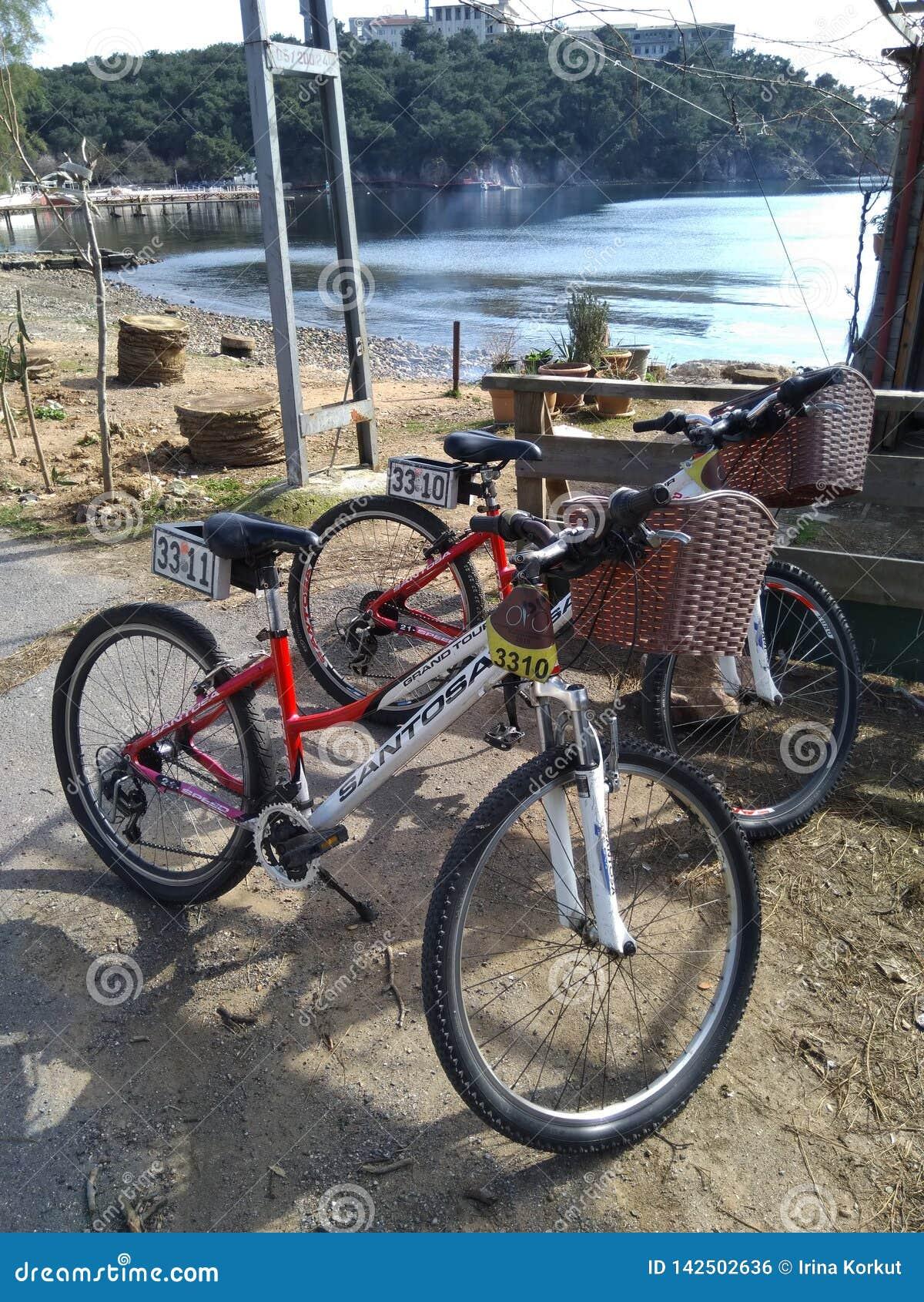 Duas bicicletas alugados que esperam eles proprietário perto da praia