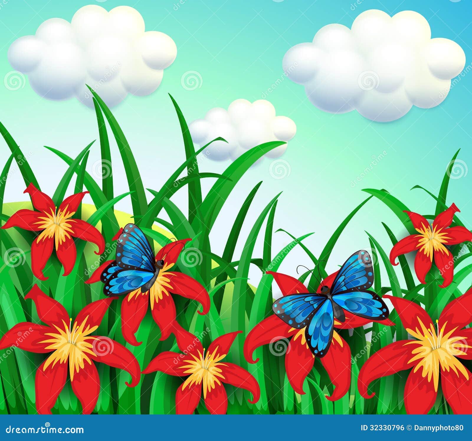 jardim rosas vermelhas:Duas Borboletas No Jardim Com Flores Vermelhas Imagem de Stock Royalty