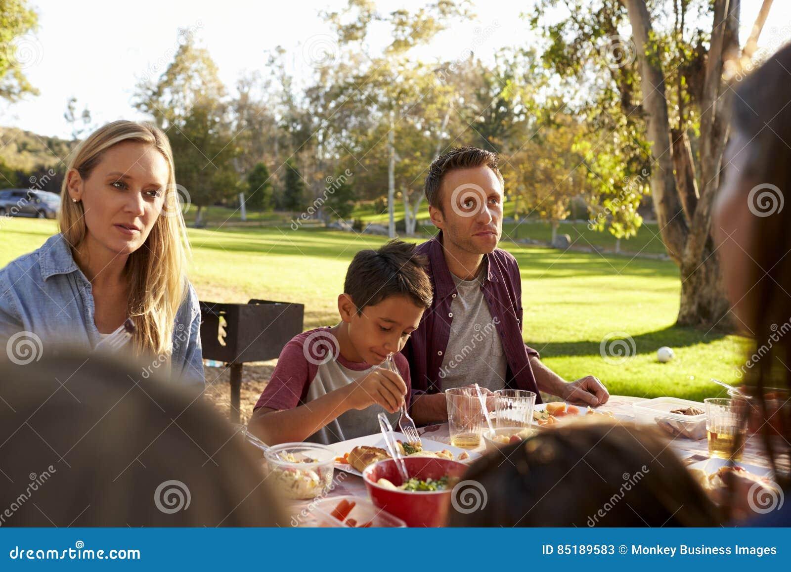 Duas famílias que têm um piquenique em um parque, sobre a opinião do ombro