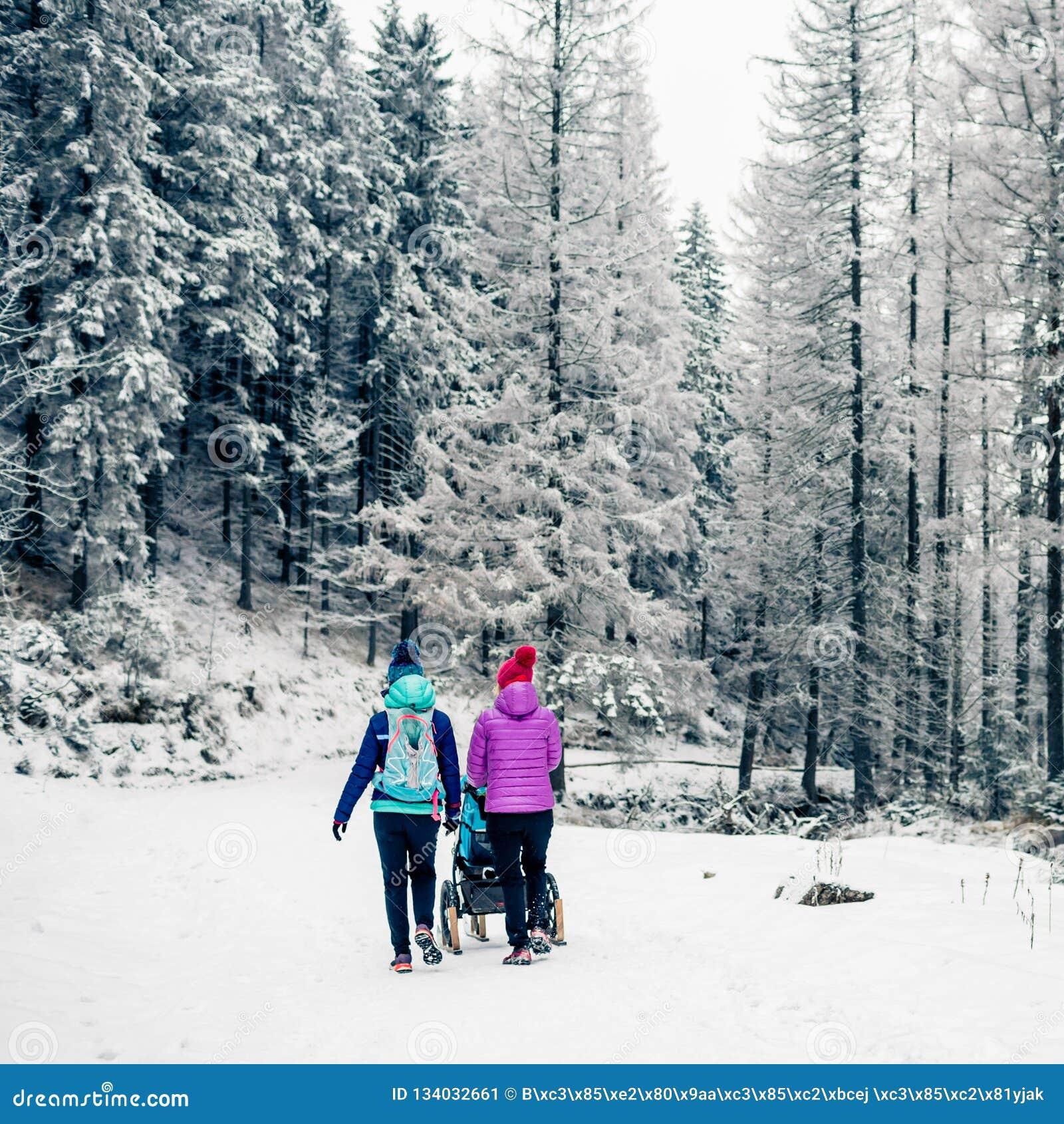 Duas mulheres com o passeante de bebê que aprecia a maternidade na floresta do inverno