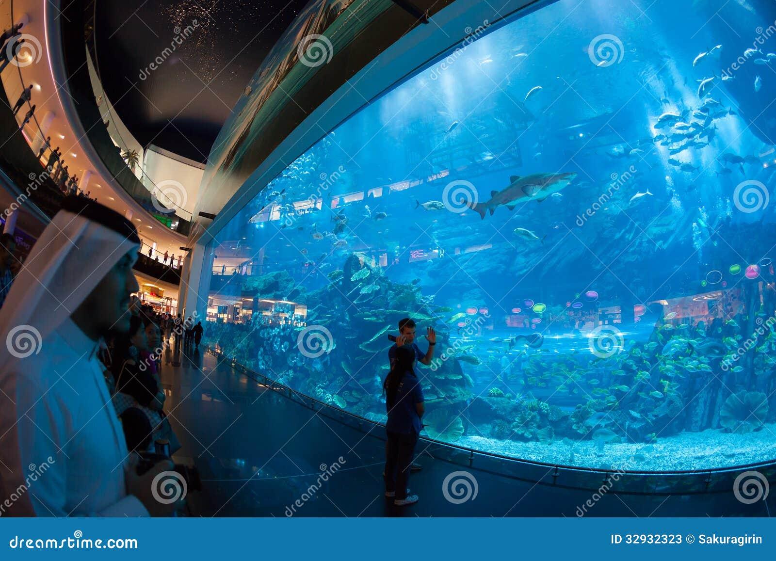 dubai aquarium und unter wasser zoo redaktionelles stockfoto bild 32932323. Black Bedroom Furniture Sets. Home Design Ideas