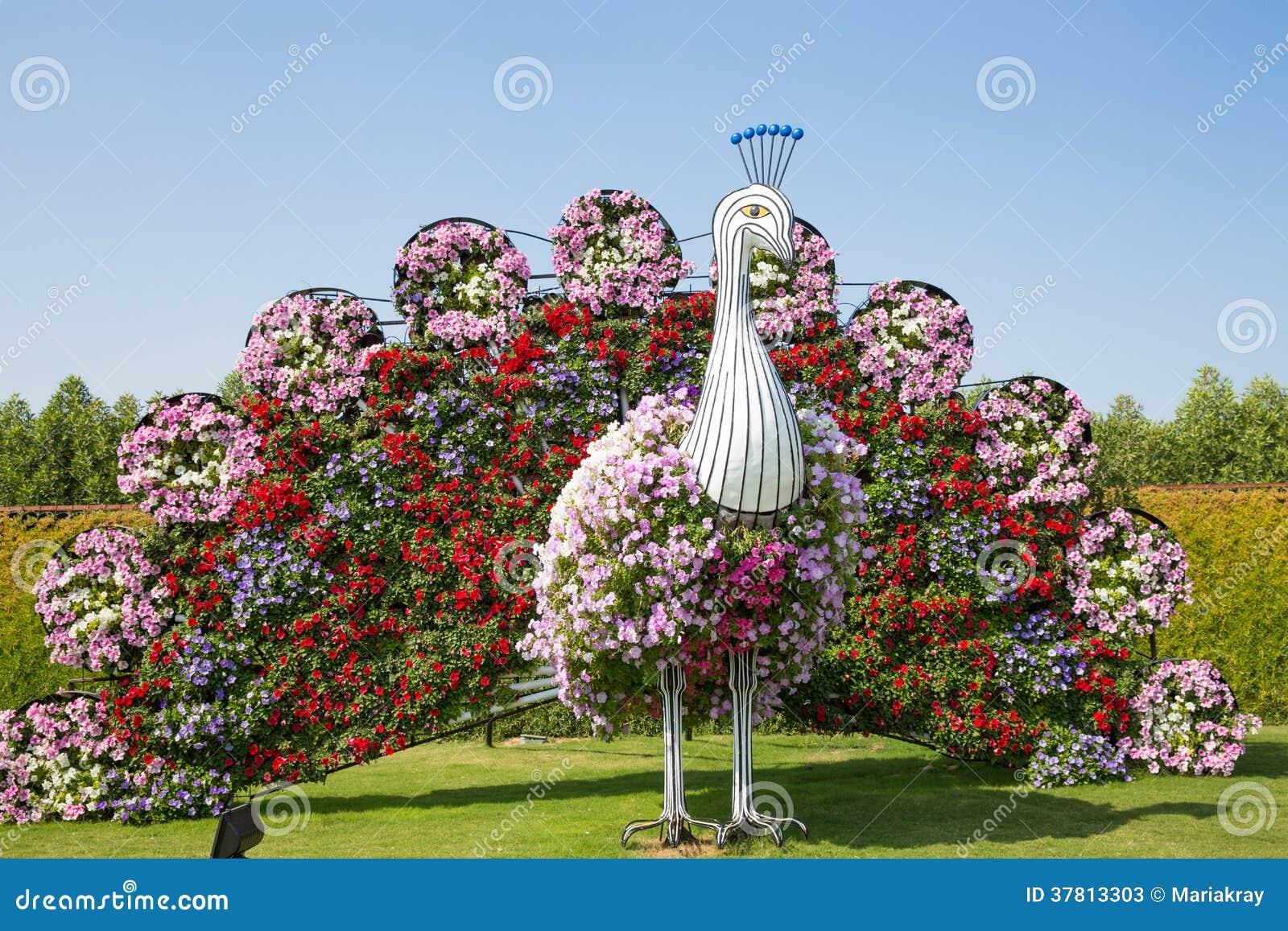 DUBAI, UAE - JANUARY 20: Miracle Garden In Dubai, On