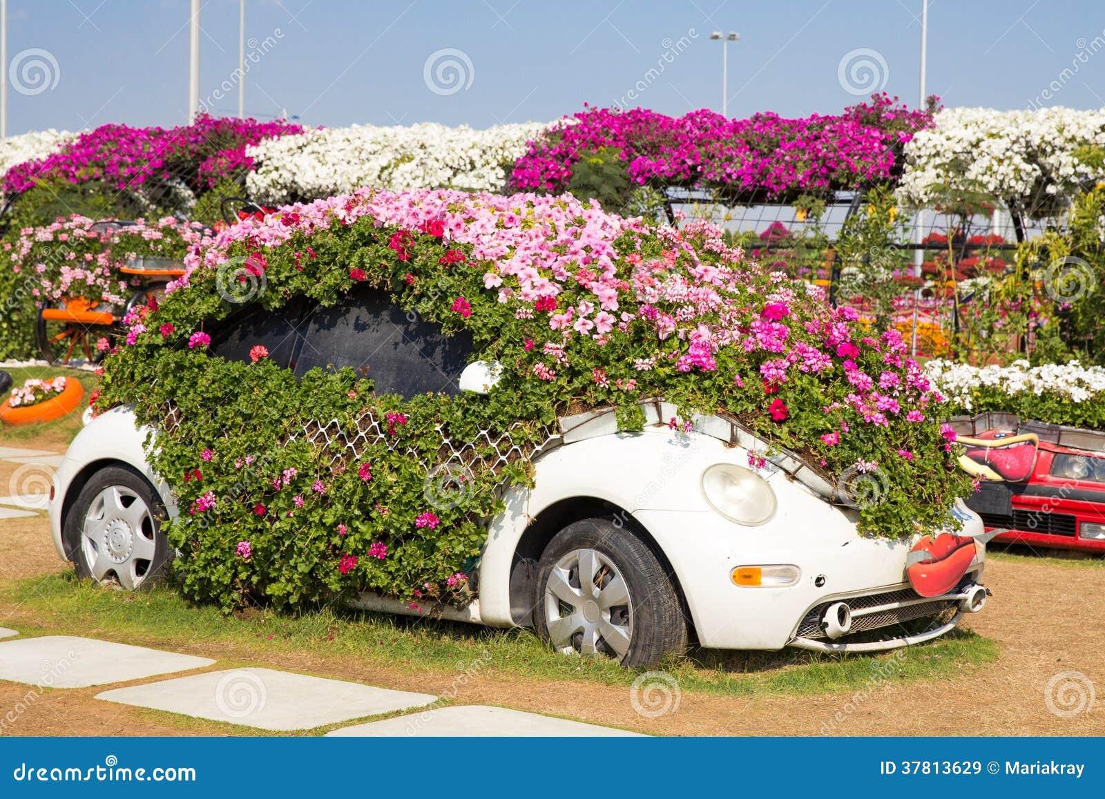 Dubai Uae January 20 Miracle Garden In Dubai On January 20 Editorial Stock Image Image