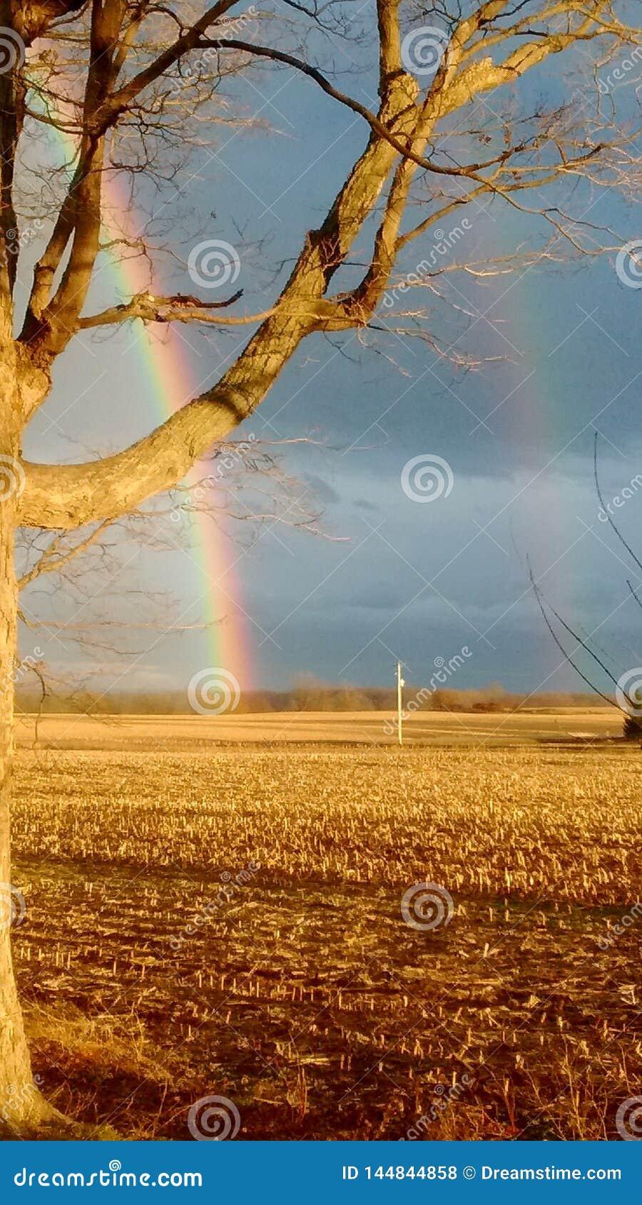Dubbele regenboog na regenonweer