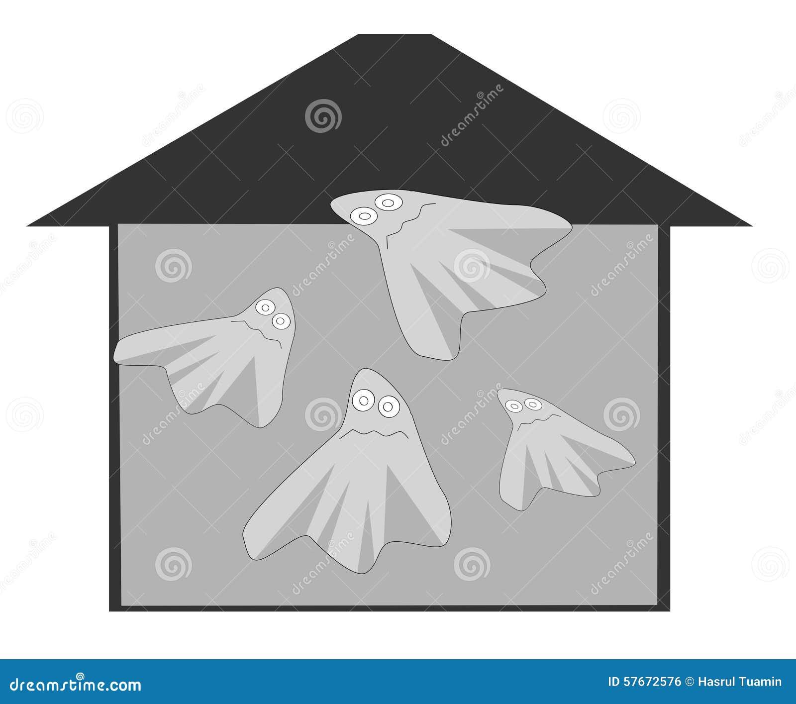Ducha dom