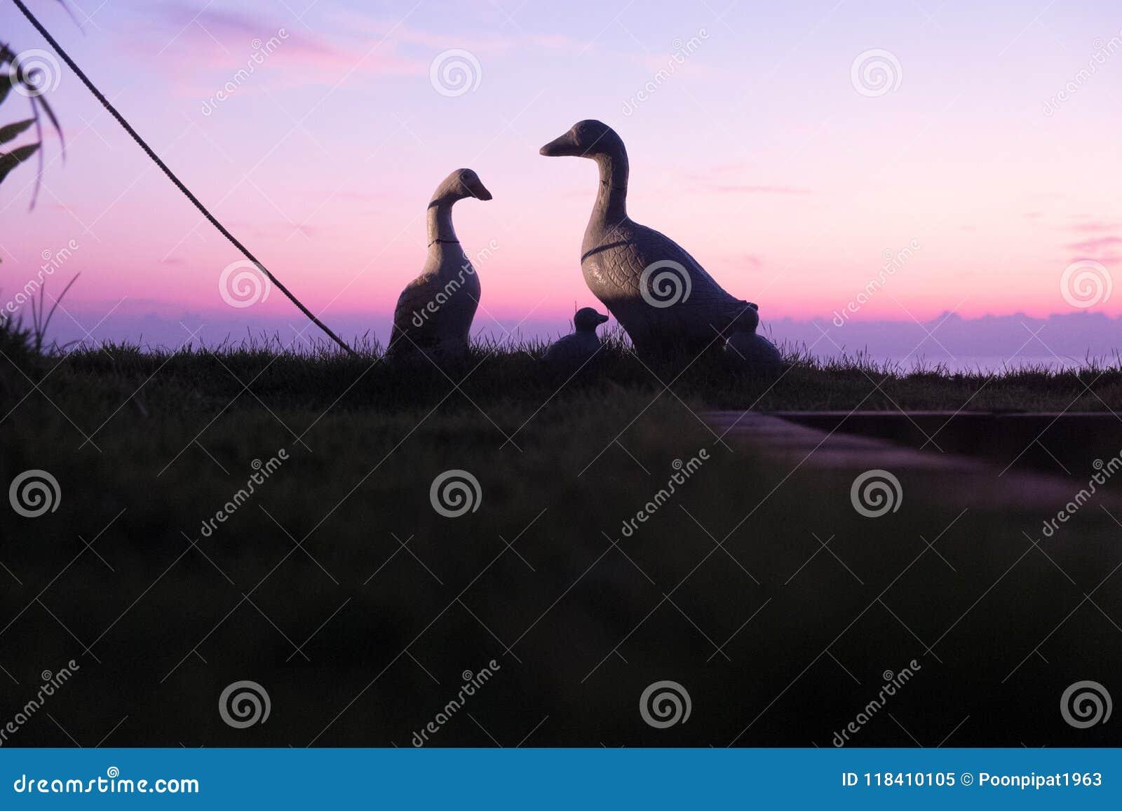 Duck Doll Good Morning Stock Image Image Of Good Landscape 118410105