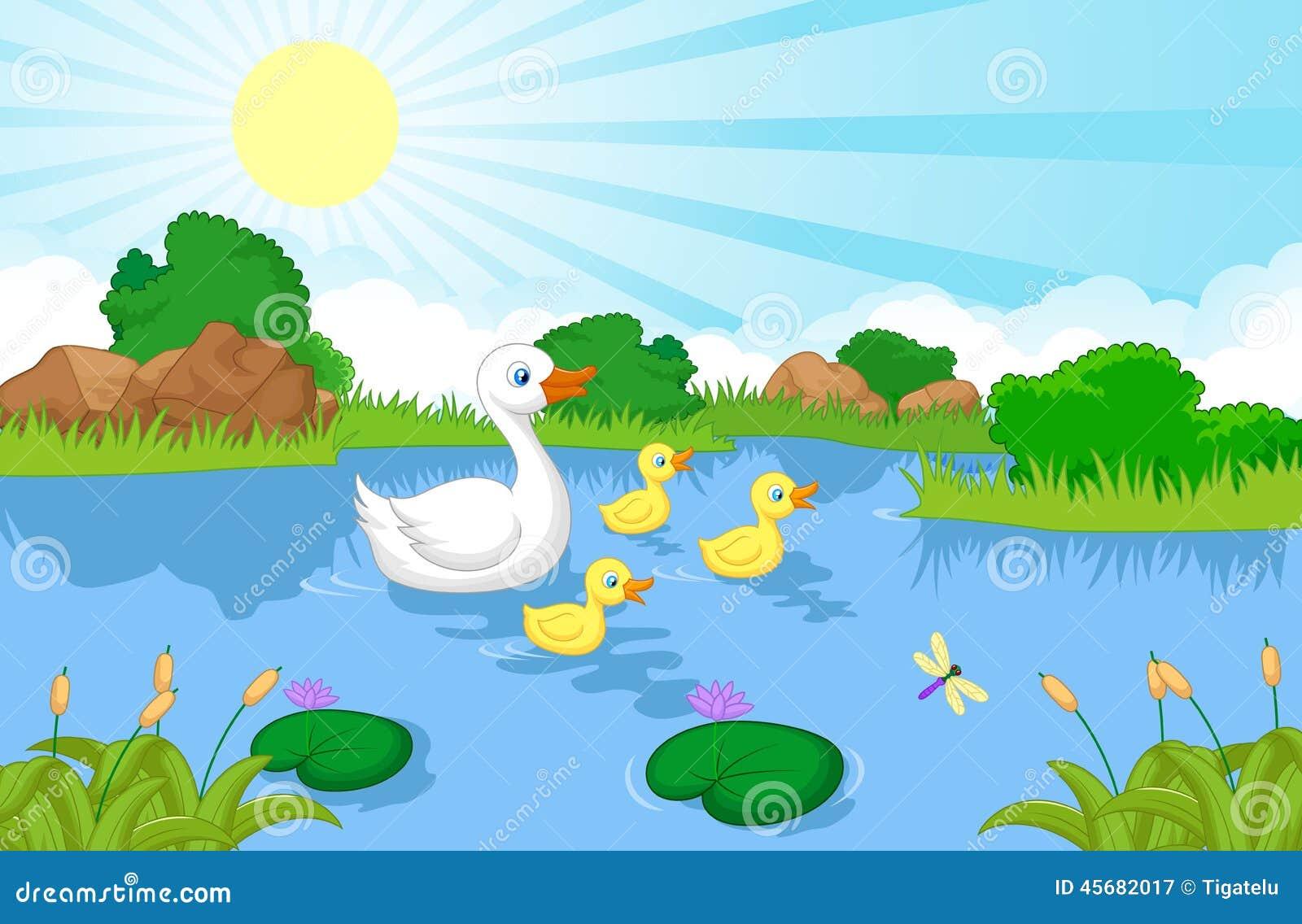 Duck Family Cartoon Swimming Stock Vector - Illustration ...