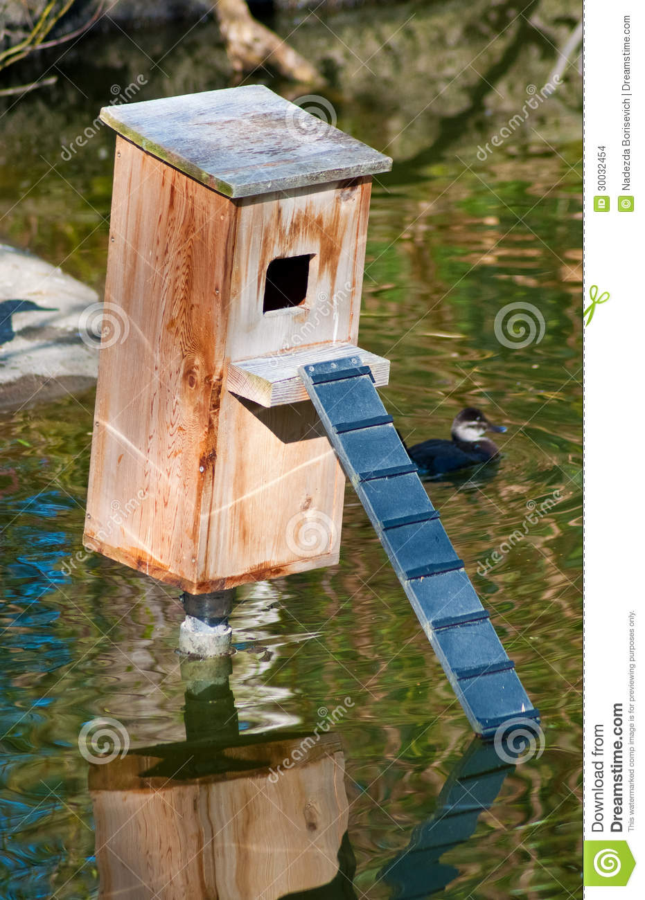 Duck Nest Wood Box On The Pond Stock Images Image 30032454
