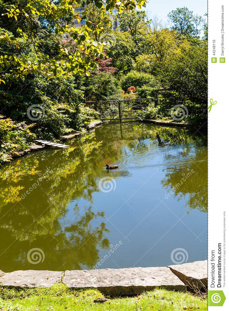 Formal garden beautiful pond in public park stock photo for Pond dealers