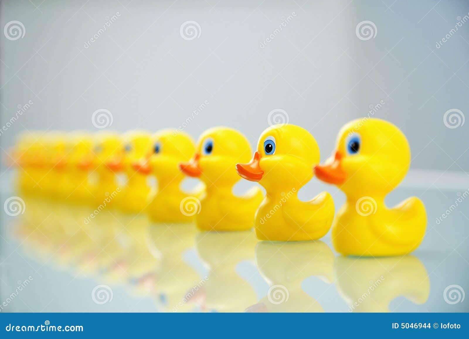 Duck, rząd
