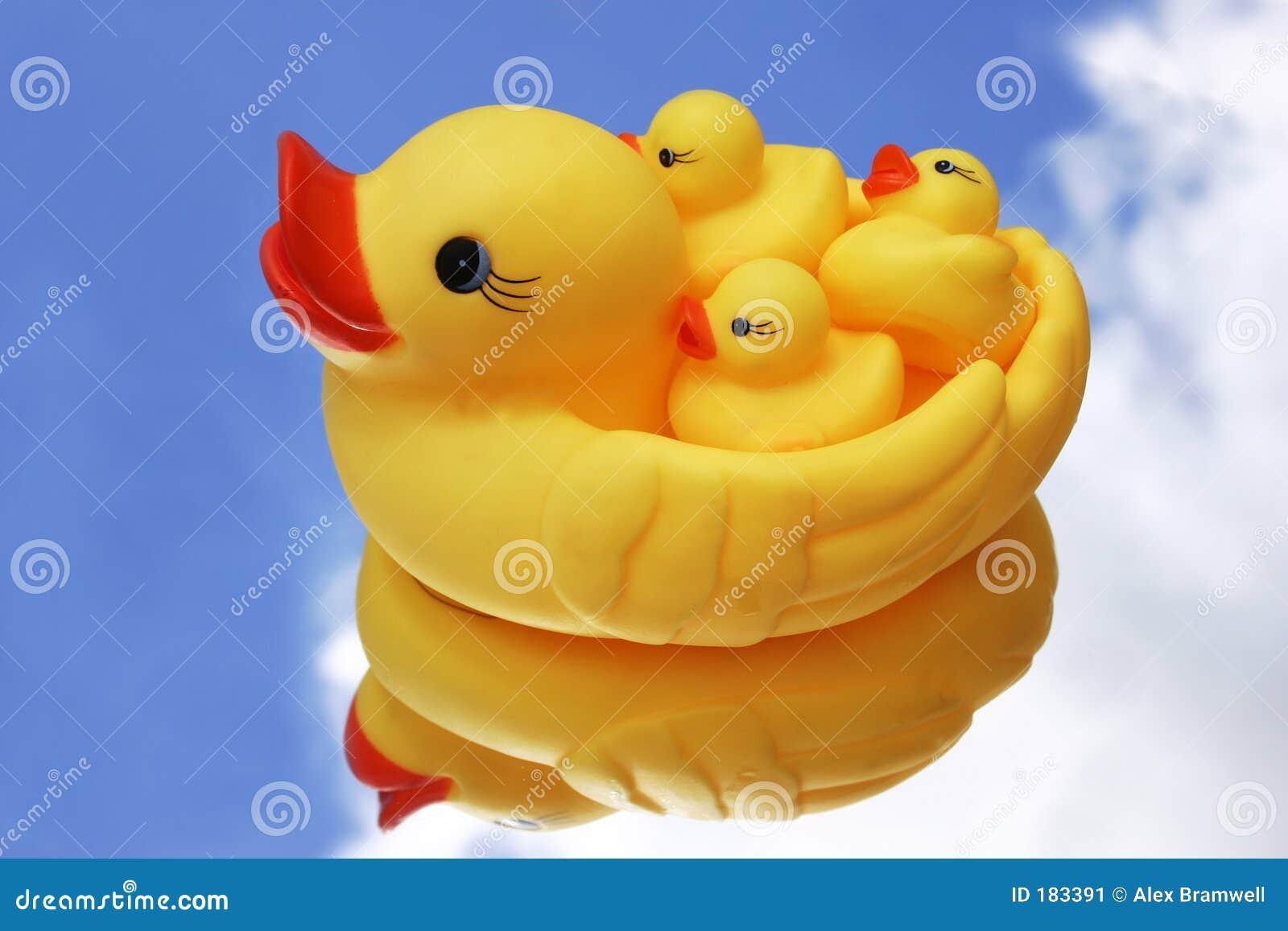 Duckies wubber