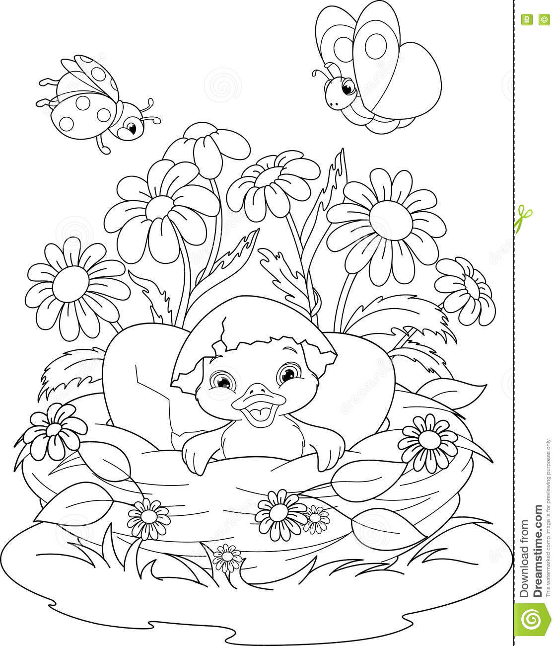 Duckling Coloring Page stock vector. Illustration of vector - 79779215