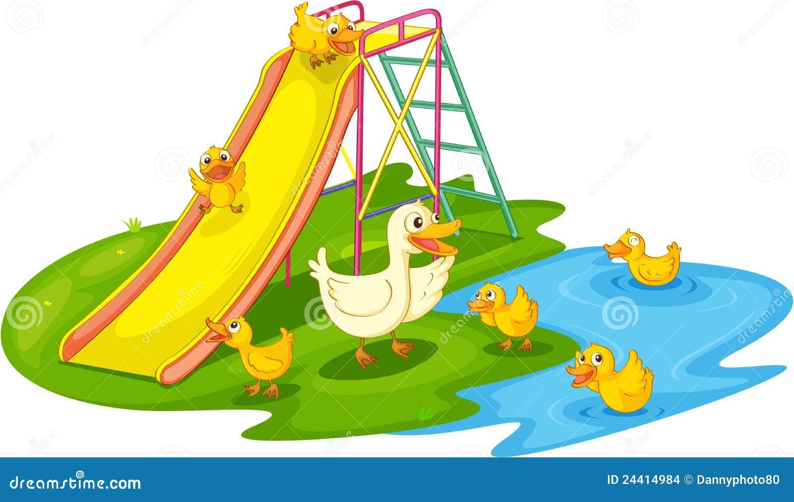 Ducks in a park stock vector image of freshwater grass for Duck slide plans