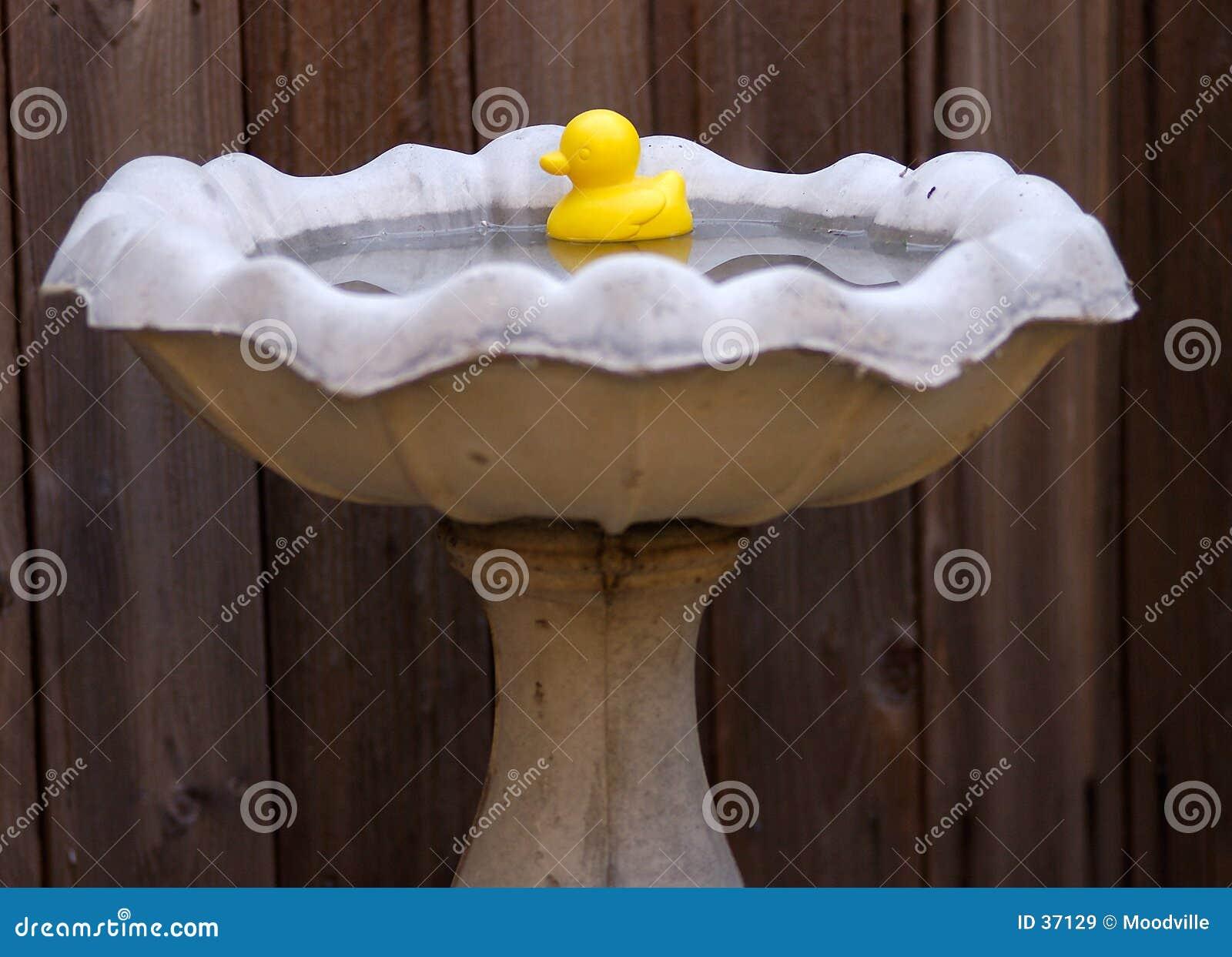 Ducky gummi
