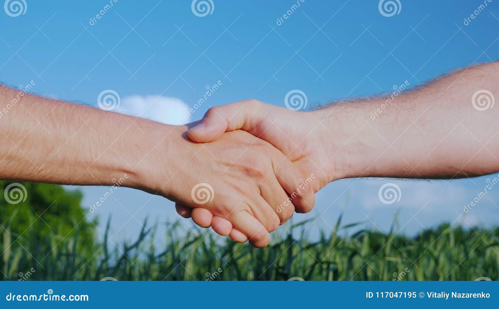 Due agricoltori maschii stringono le mani Contro lo sfondo di un campo verde e di un cielo blu Affare nel concetto di commercio n
