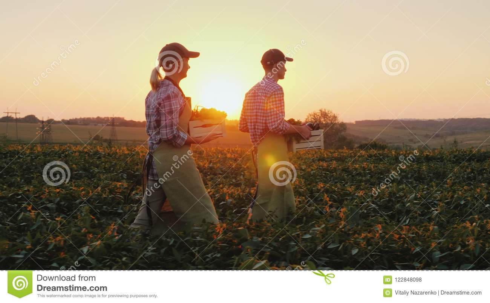 Due agricoltori uomo e donna stanno camminando lungo il campo, portante le scatole con gli ortaggi freschi Agricoltura biologica