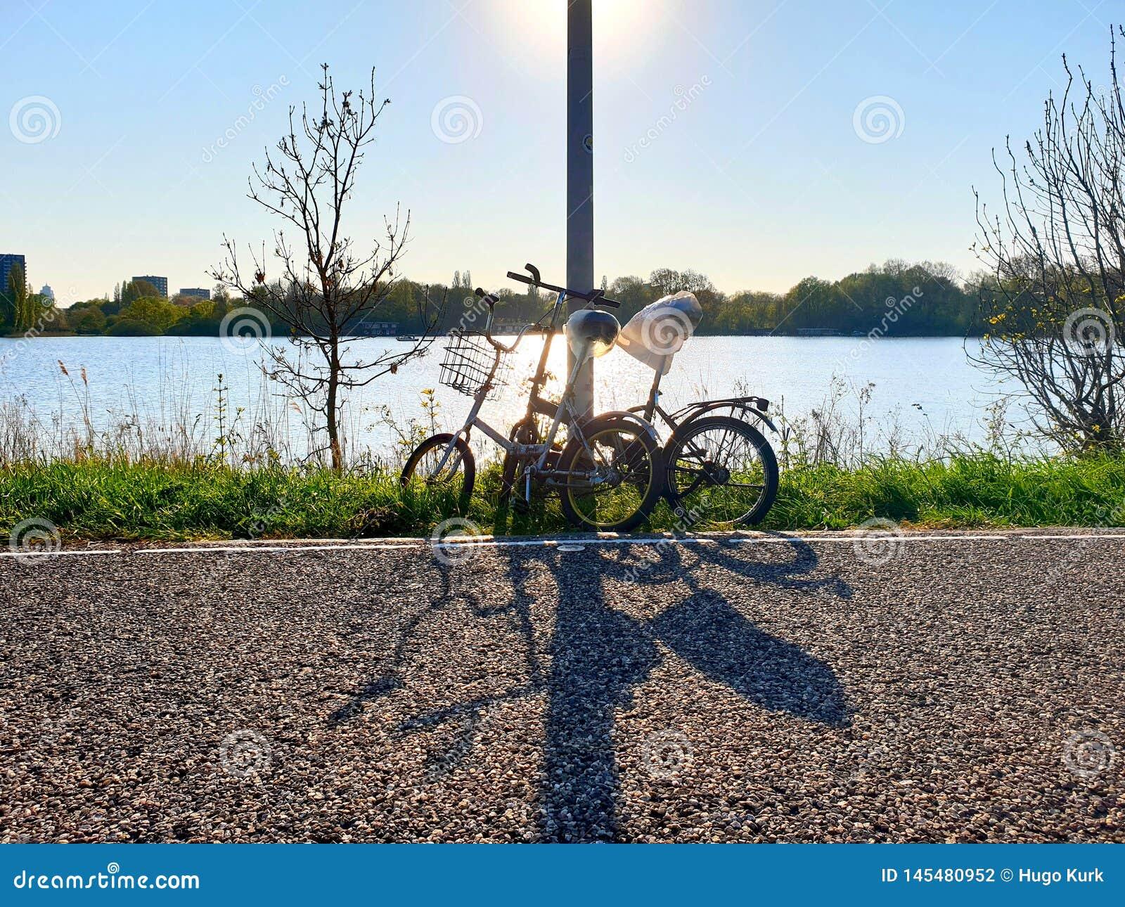 Due biciclette parcheggiate lungo la strada