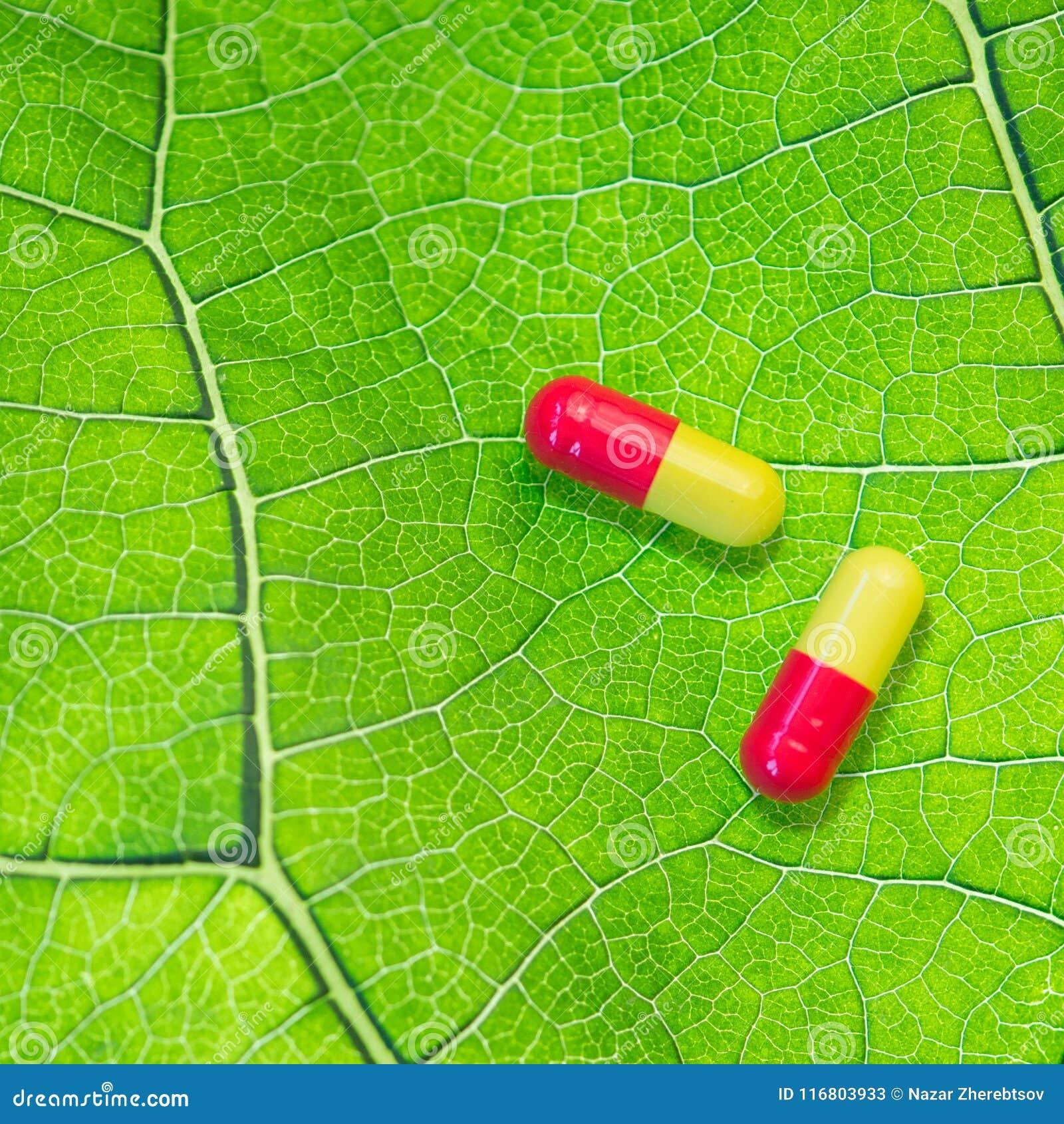 Due capsule colorate su una foglia verde Concetto di medicina organica