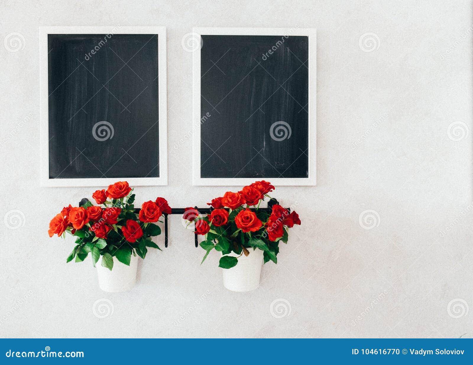 Due lavagne e due mini vasi delle rose sulla parete concreta di lerciume