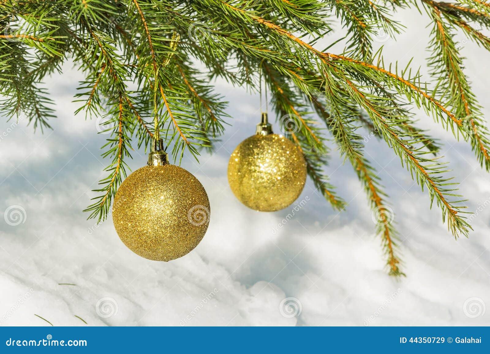 Due palle dorate di Natale sul ramo attillato verde