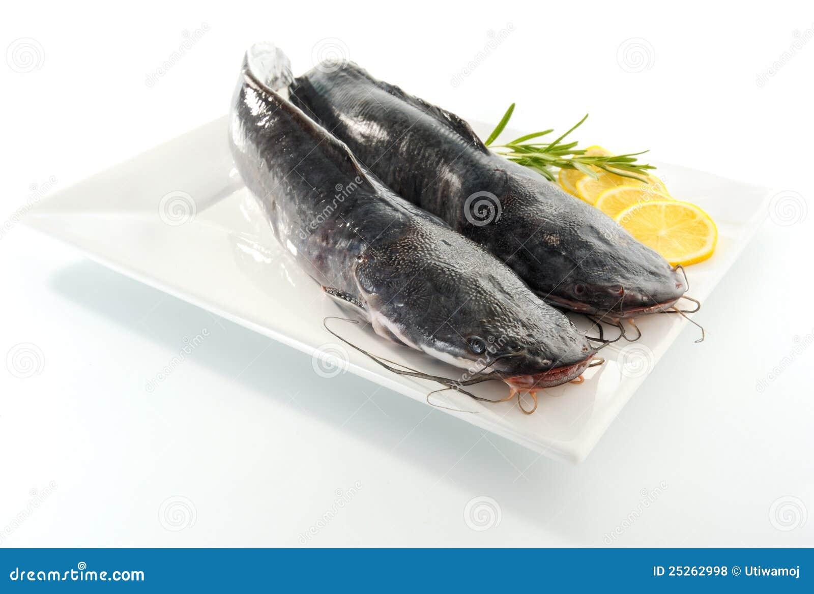 Due Pesci Gatto Fotografia Stock Immagine Di Commestibile 25262998