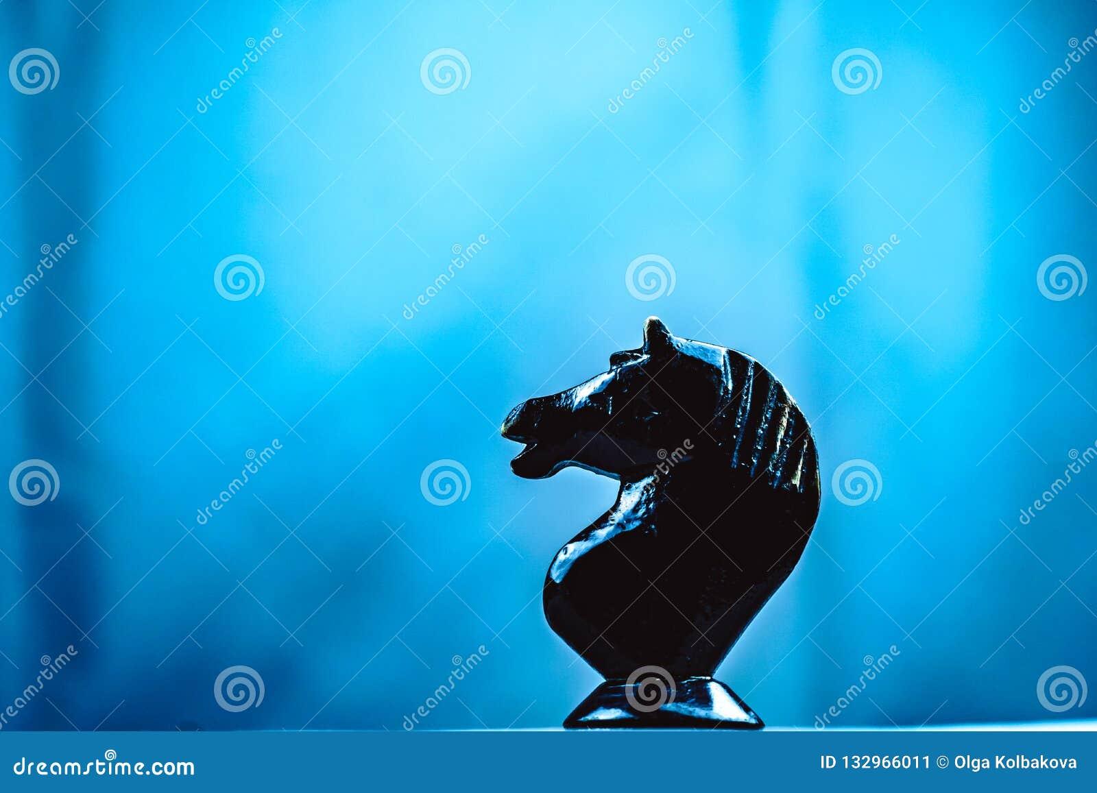 Due pezzi degli scacchi dei cavalli