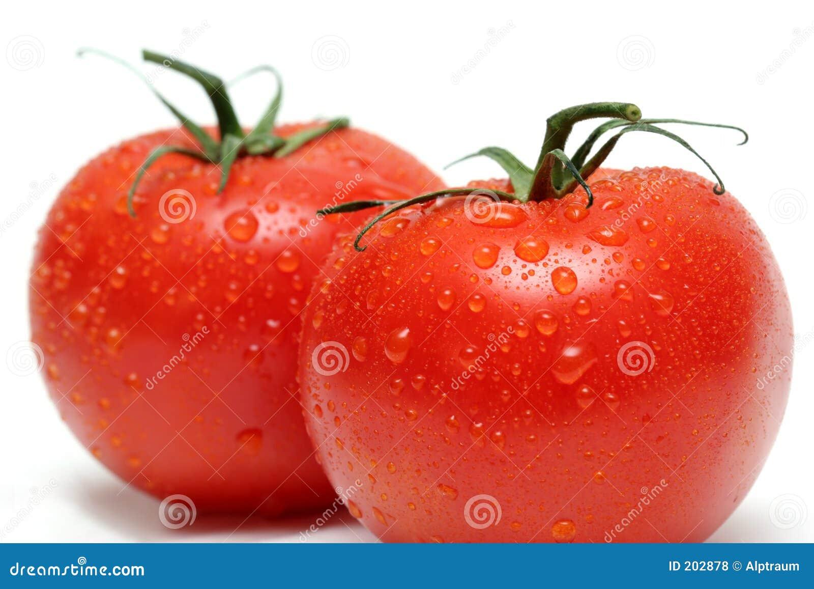 Due pomodori della vite a macroistruzione