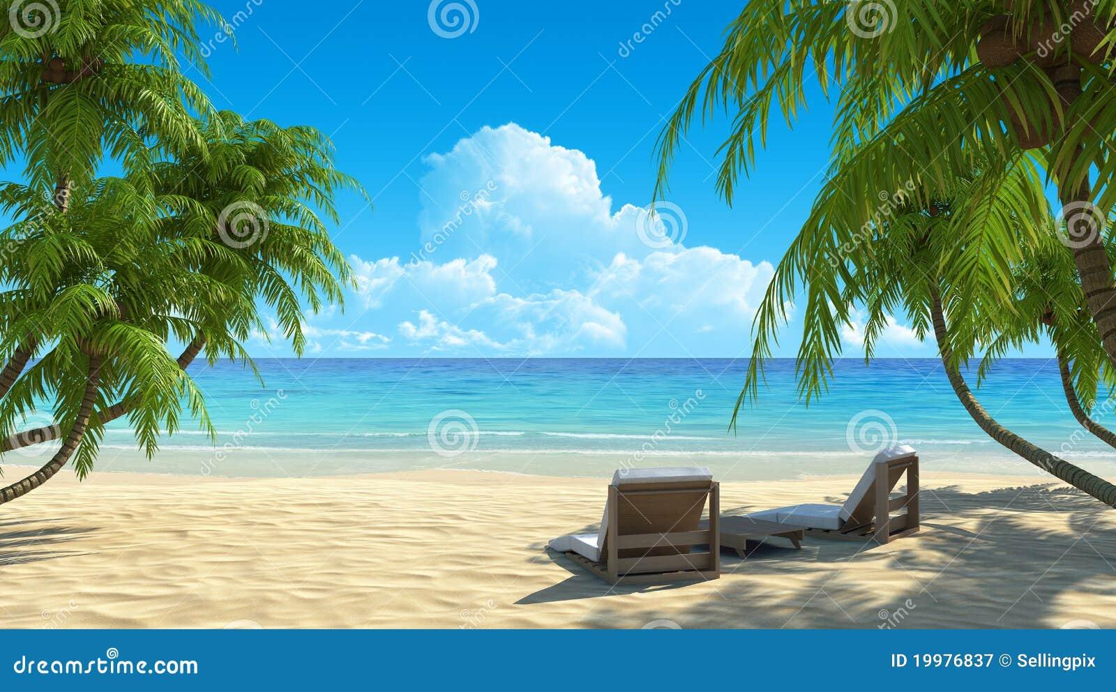 Due presidenze di spiaggia sulla sabbia bianca tropicale for Disegni da camera da spiaggia