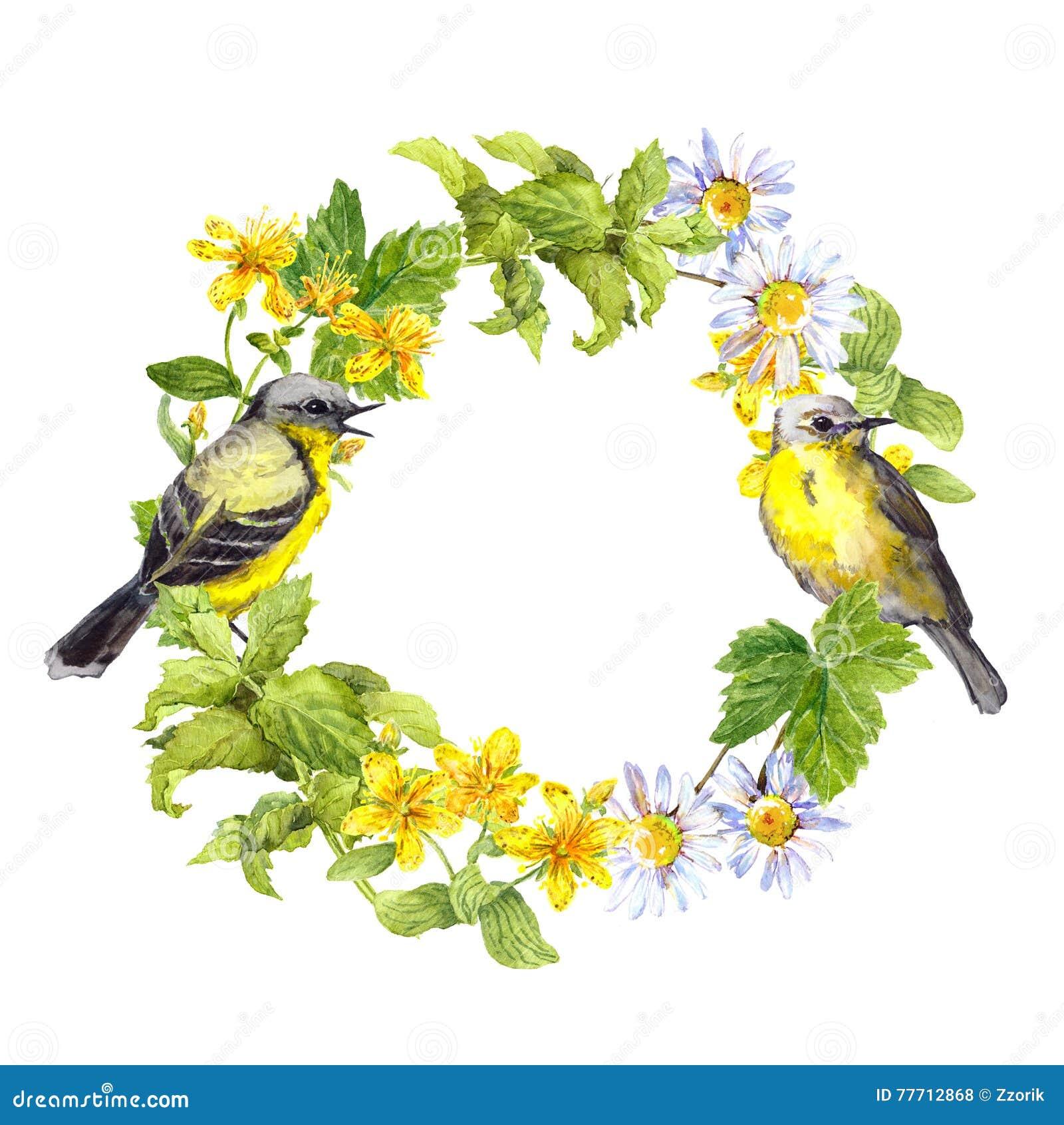 Due uccelli, erbe selvagge, fiori del prato Corona floreale anello dell acquerello
