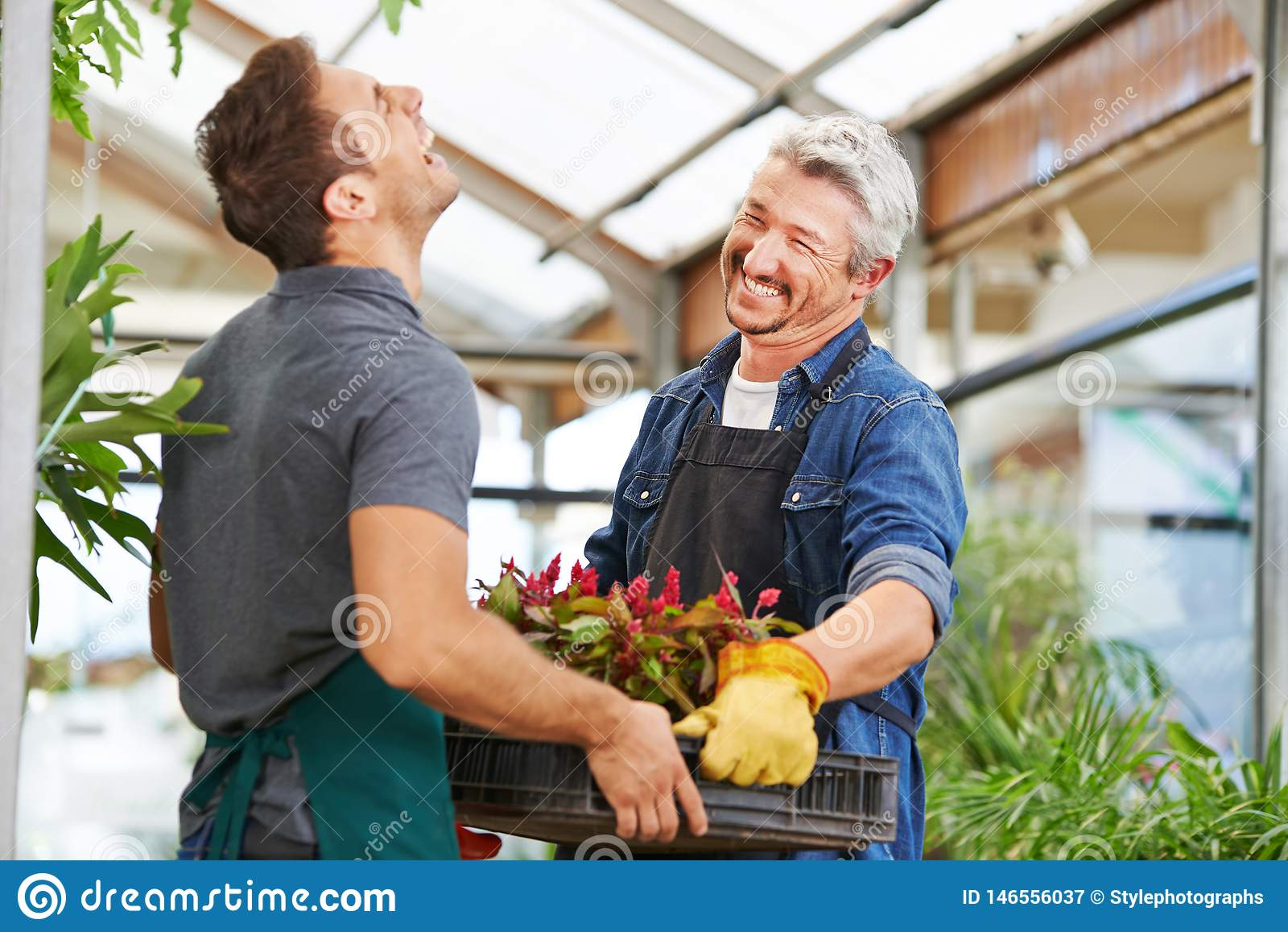 Due uomini come fioristi nel giardinaggio