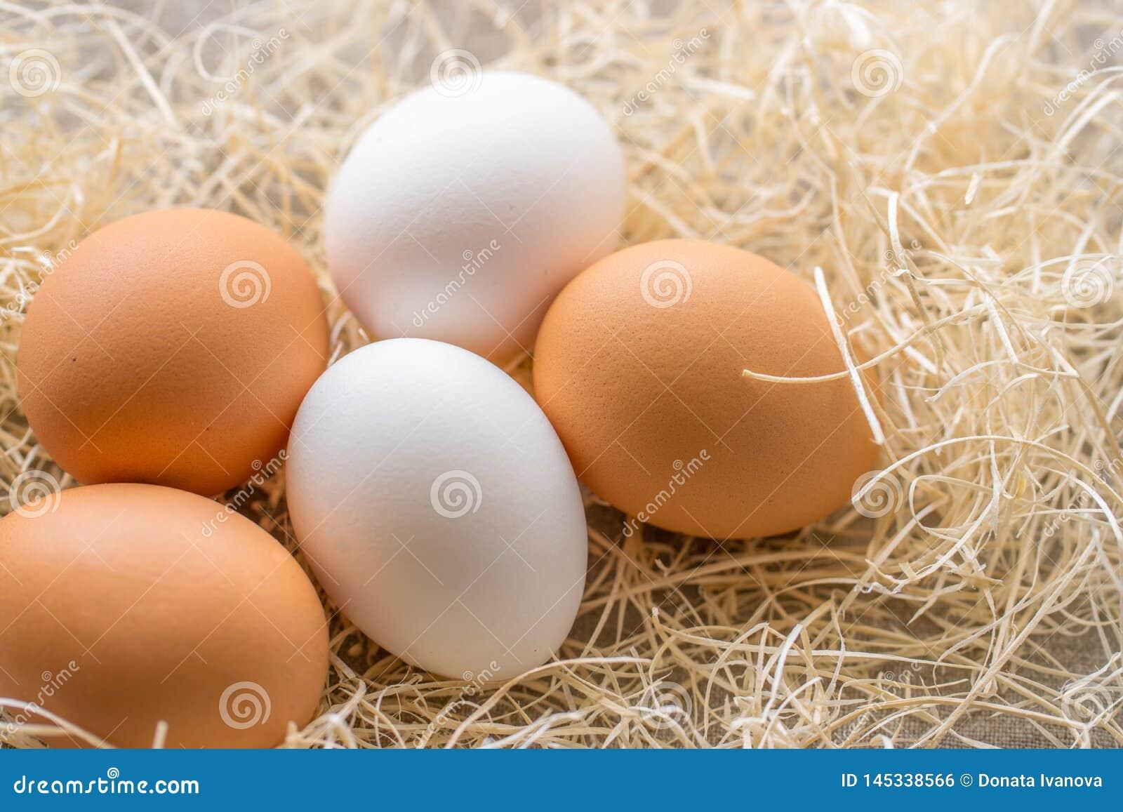 Due uova bianche e tre marroni sui precedenti di fieno