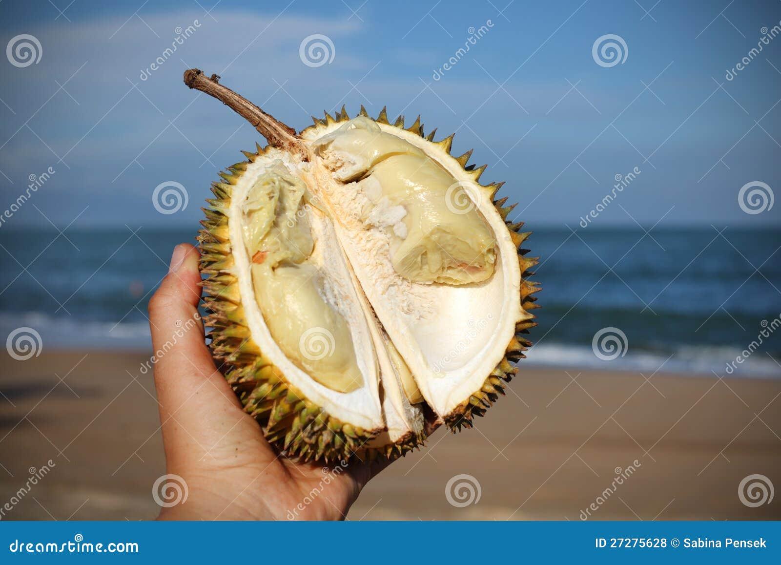 Duian frukt halverade handholdingen på stranden i Th