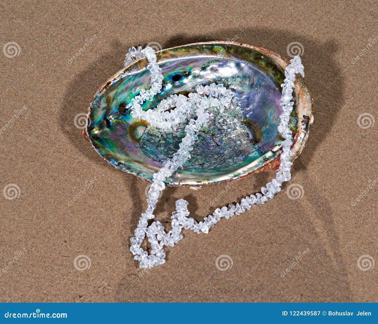 Duidelijk Kwarts Getuimeld die Chips Necklace op abalone shell op het strand wordt voorgesteld