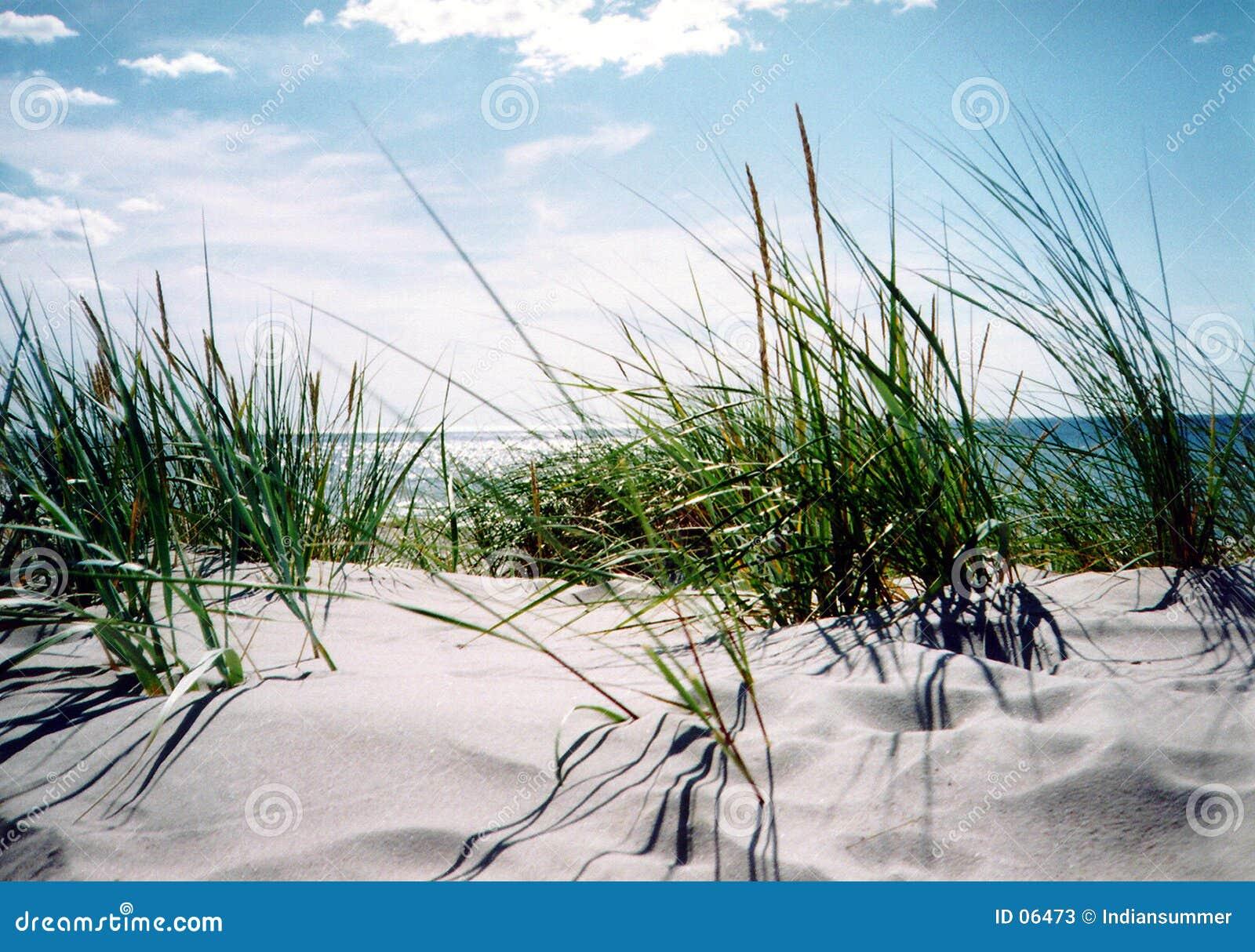 Duidelijke de zomerdag door de kust