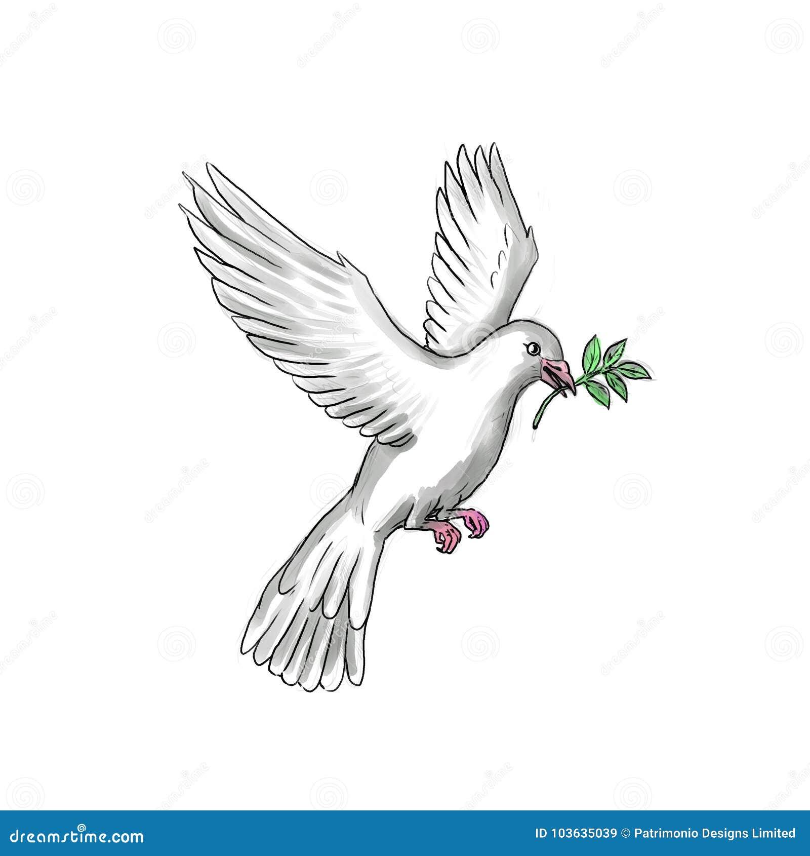 Duif Olive Leaf Tattoo Stock Illustratie Illustratie