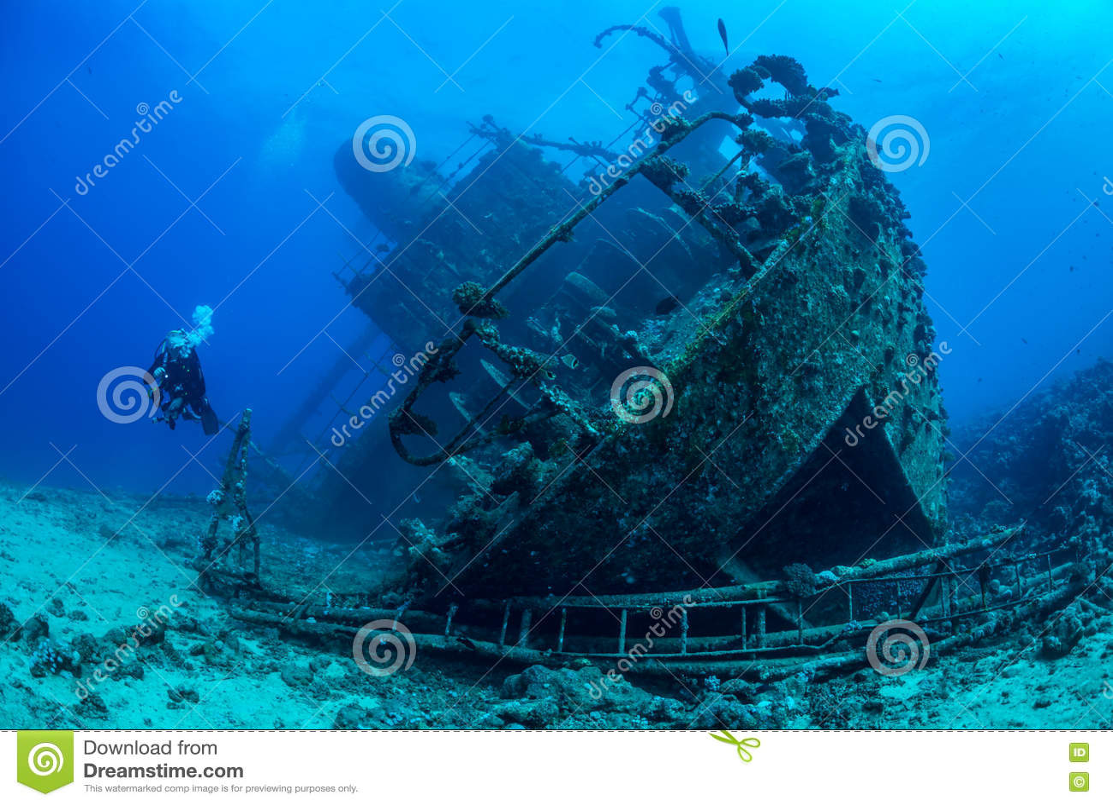 Duiker die Rood Overzees wrak onderzoeken