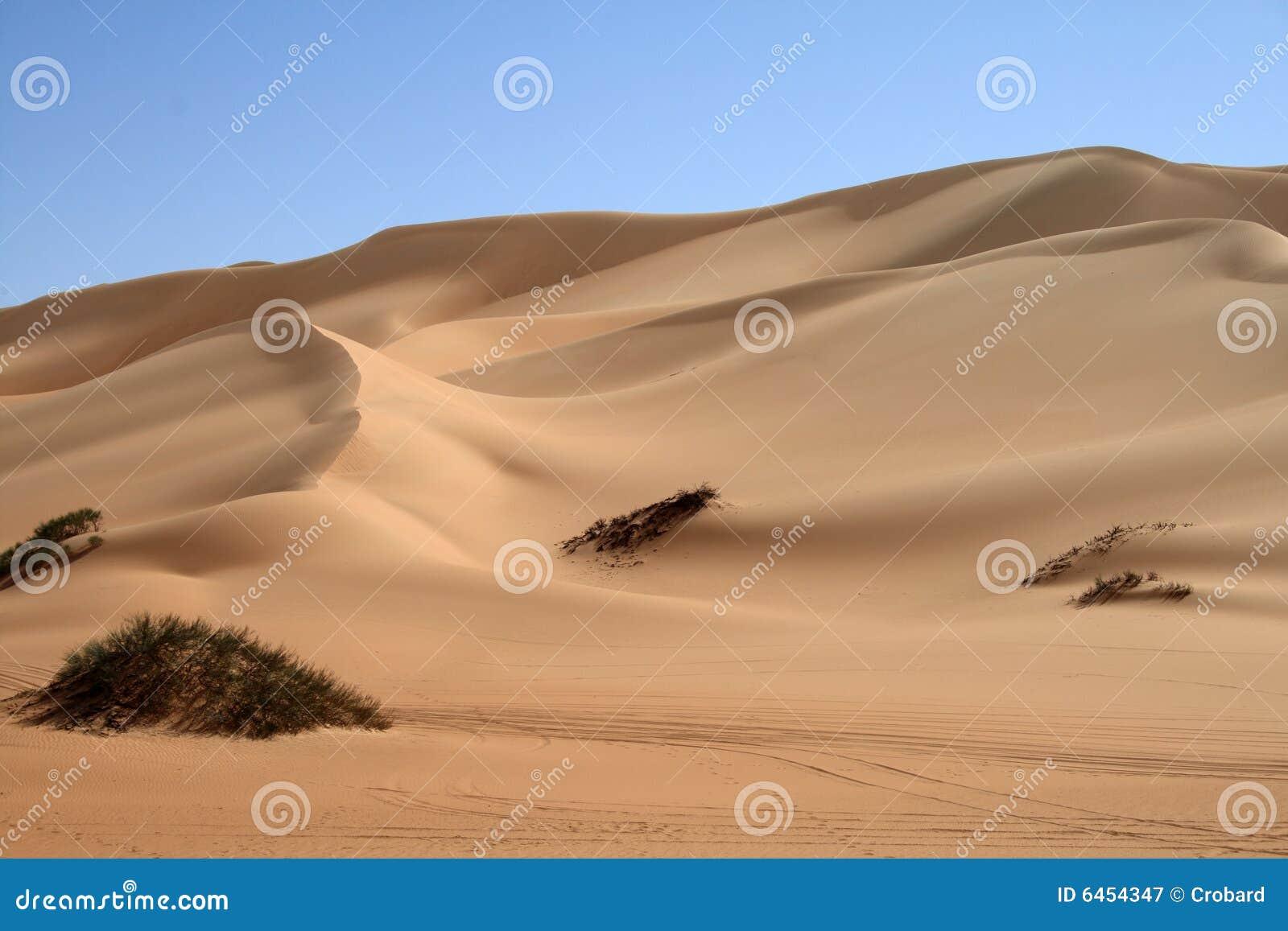 Duin van de woestijn van de Sahara