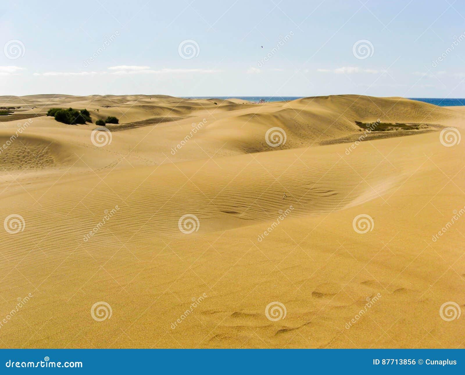 Duinen in Maspalomas